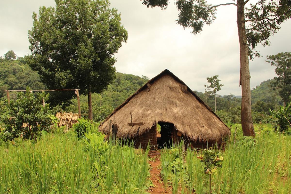 La casa di un mahout