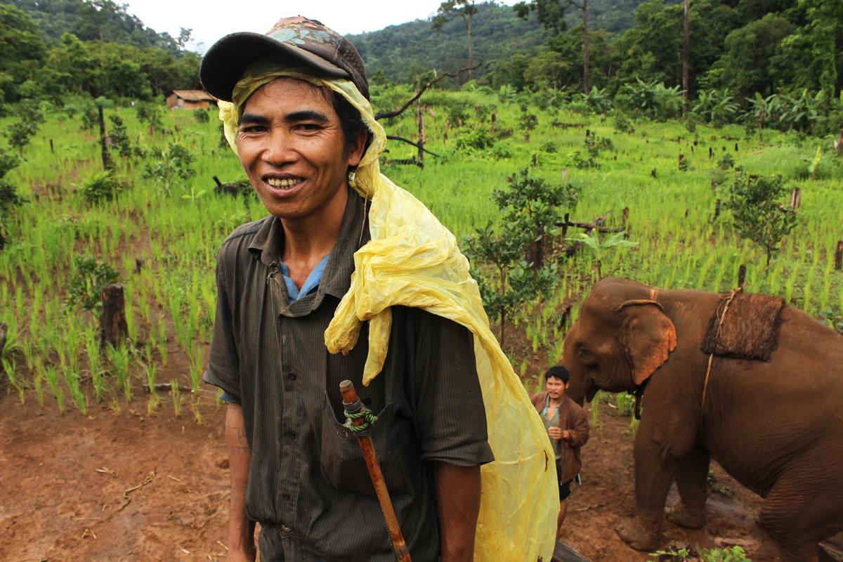 Il mahout Aong