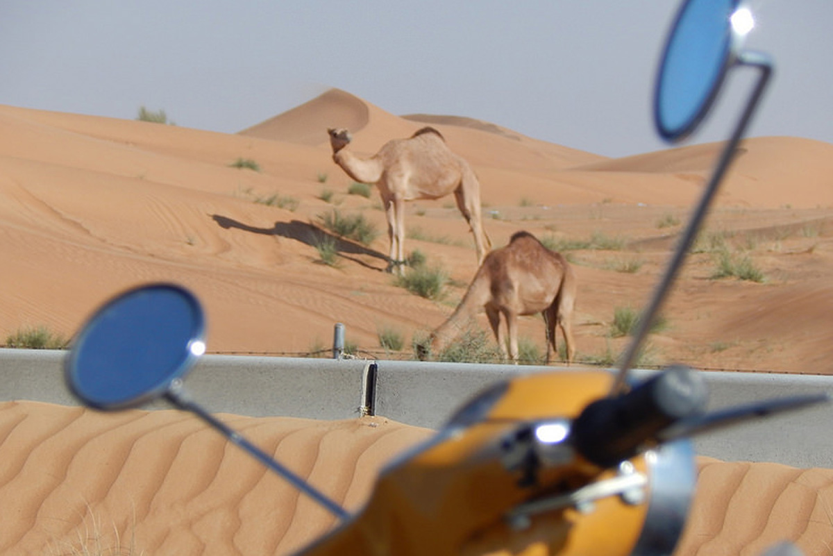 Emirati Arabi Uniti (f  oto di Luca Capocchiano)