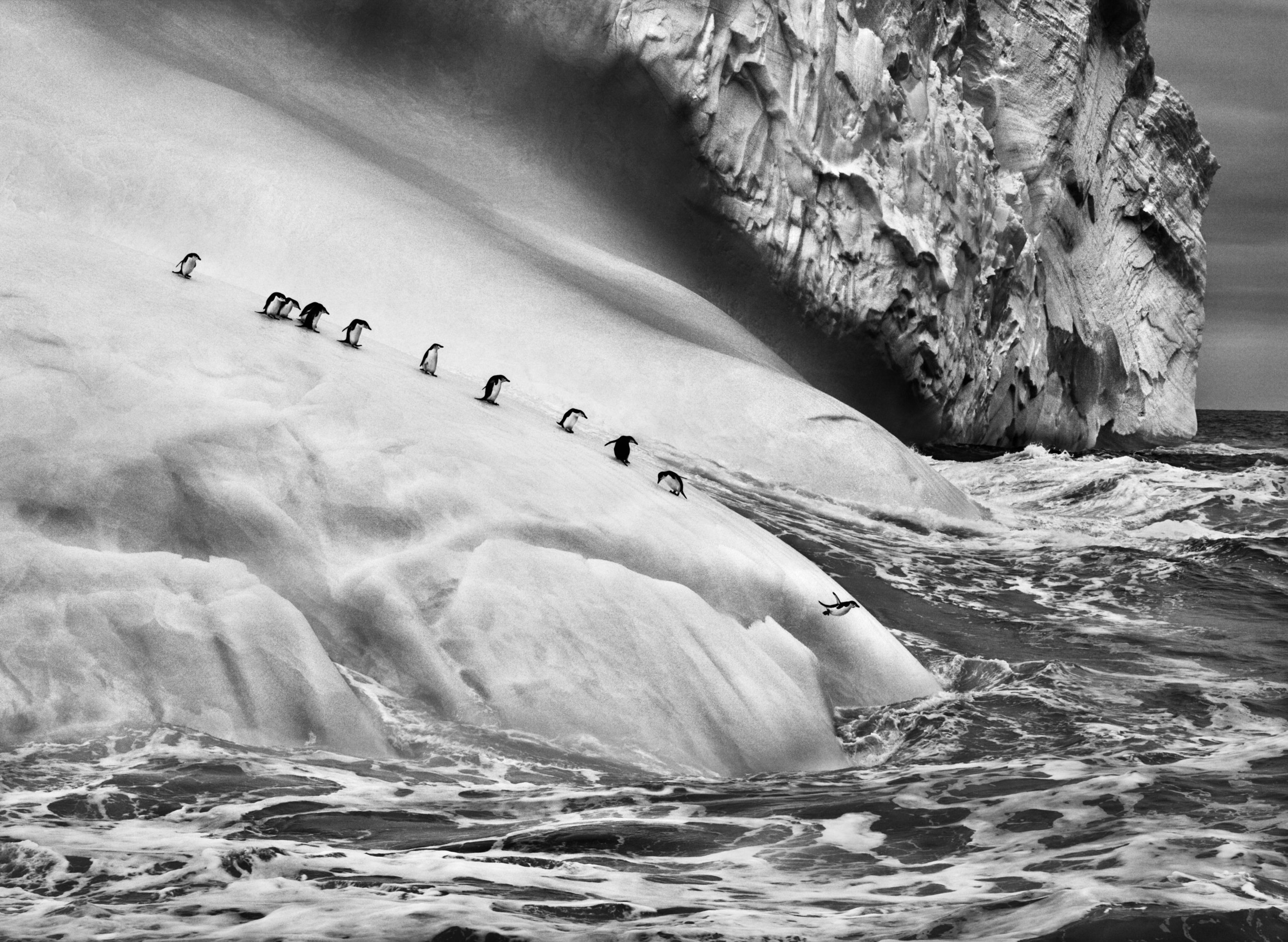 © Sebastião Salgado/Amazonas Images/Contrasto