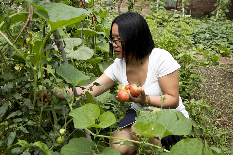 Ba Ya Li, direttrice del Centro di ricostruzione rurale e membro del comitato scientifico di Slow Food Great China