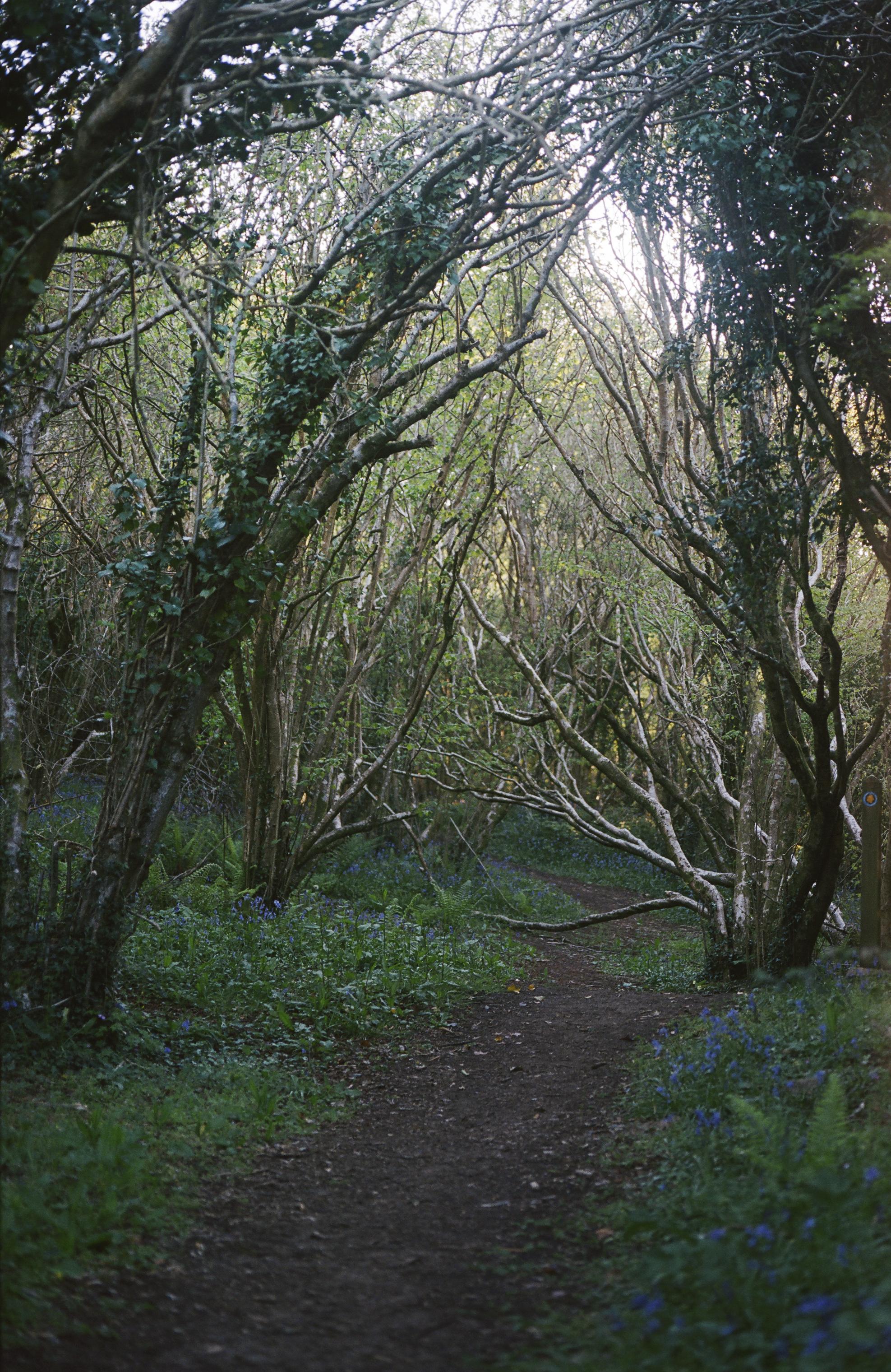 trail/wales