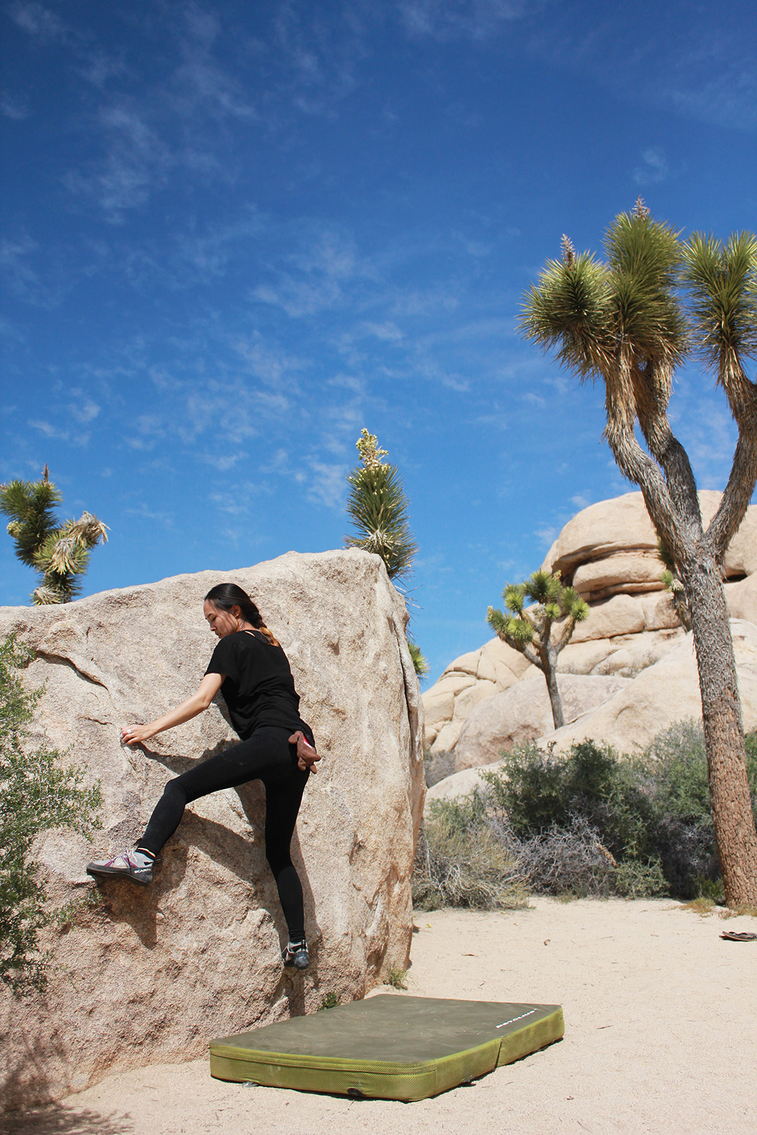 Rented our crash pad from Joshua Tree Outfitters.