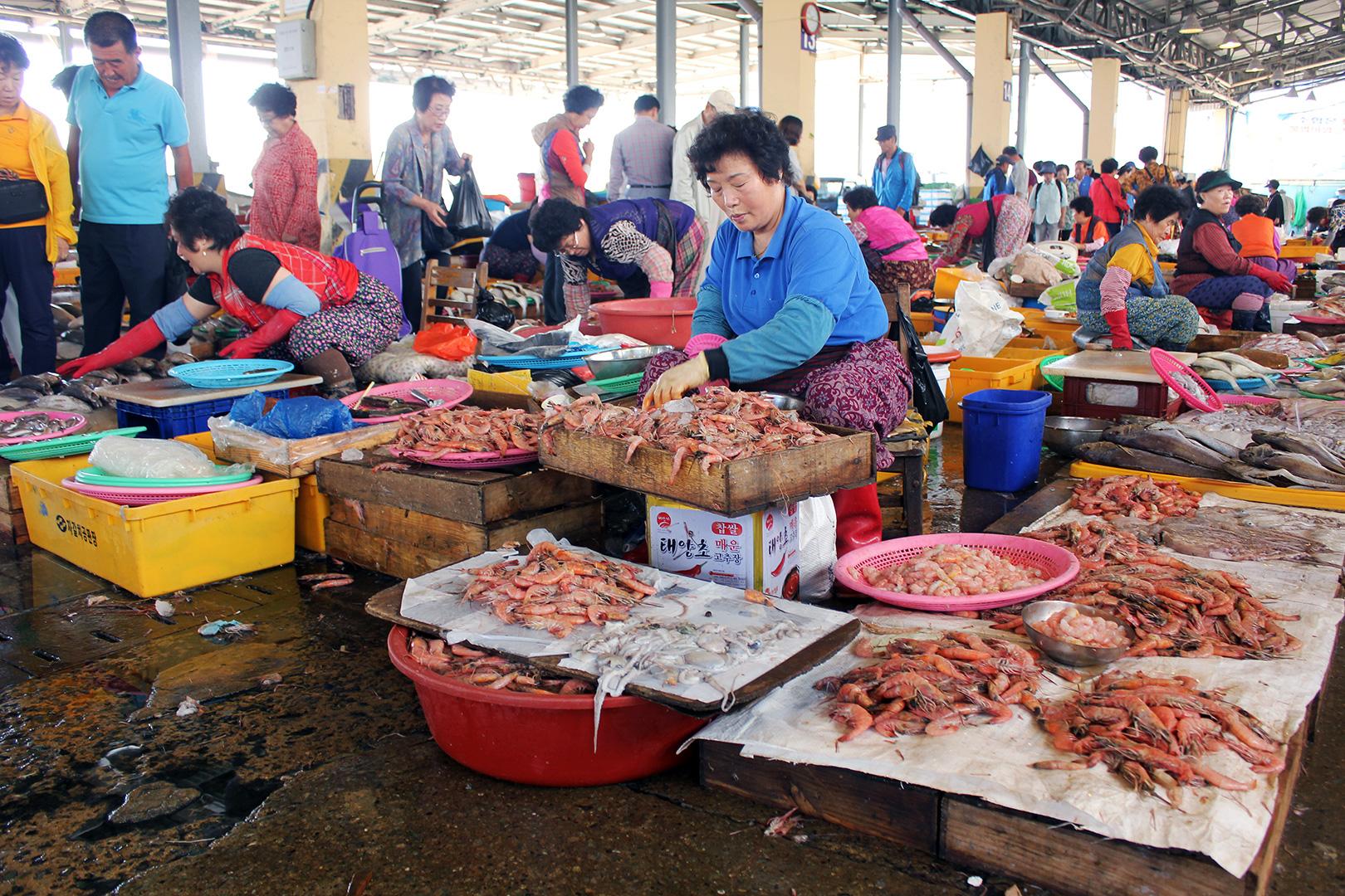Shrimp galore!