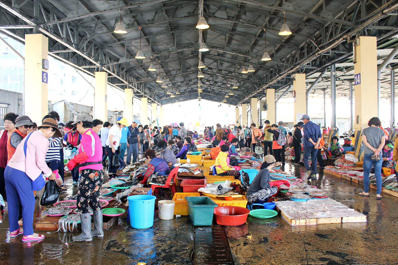 Row upon row of seafood vendors inside the Jagalchi Fish Market
