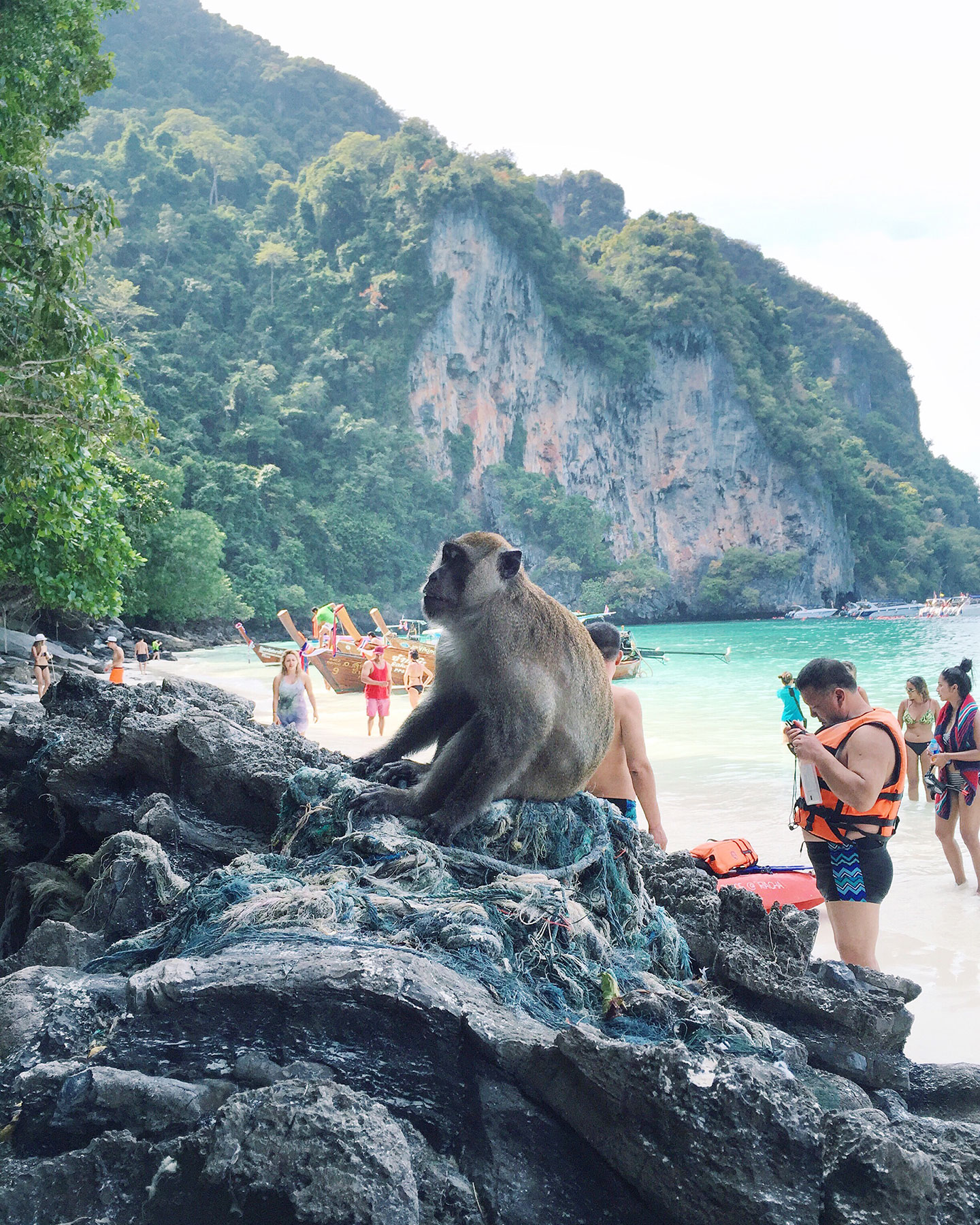 Monkey beach in the Phi Phi Islands