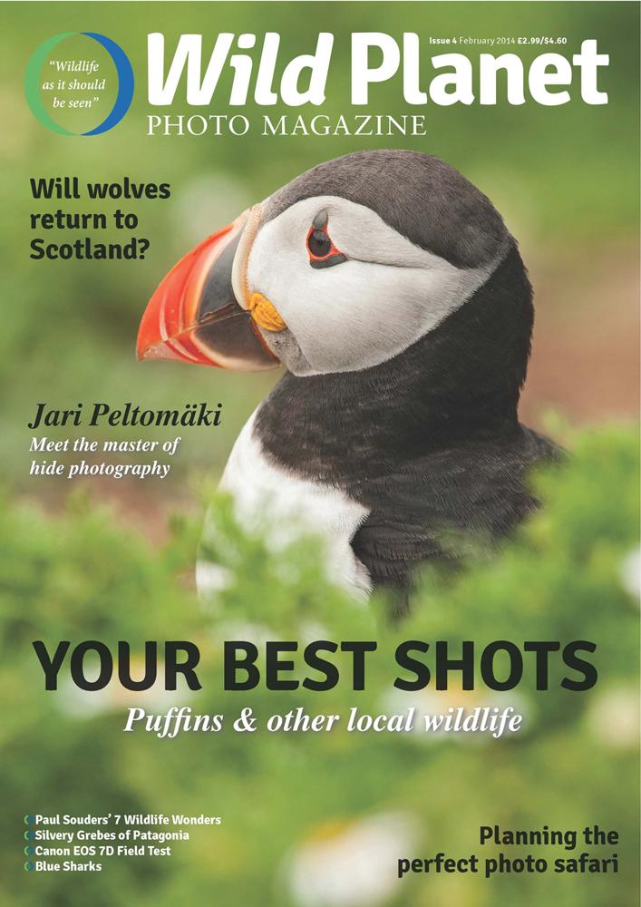 Cover of Wild Planet Photo Magazine