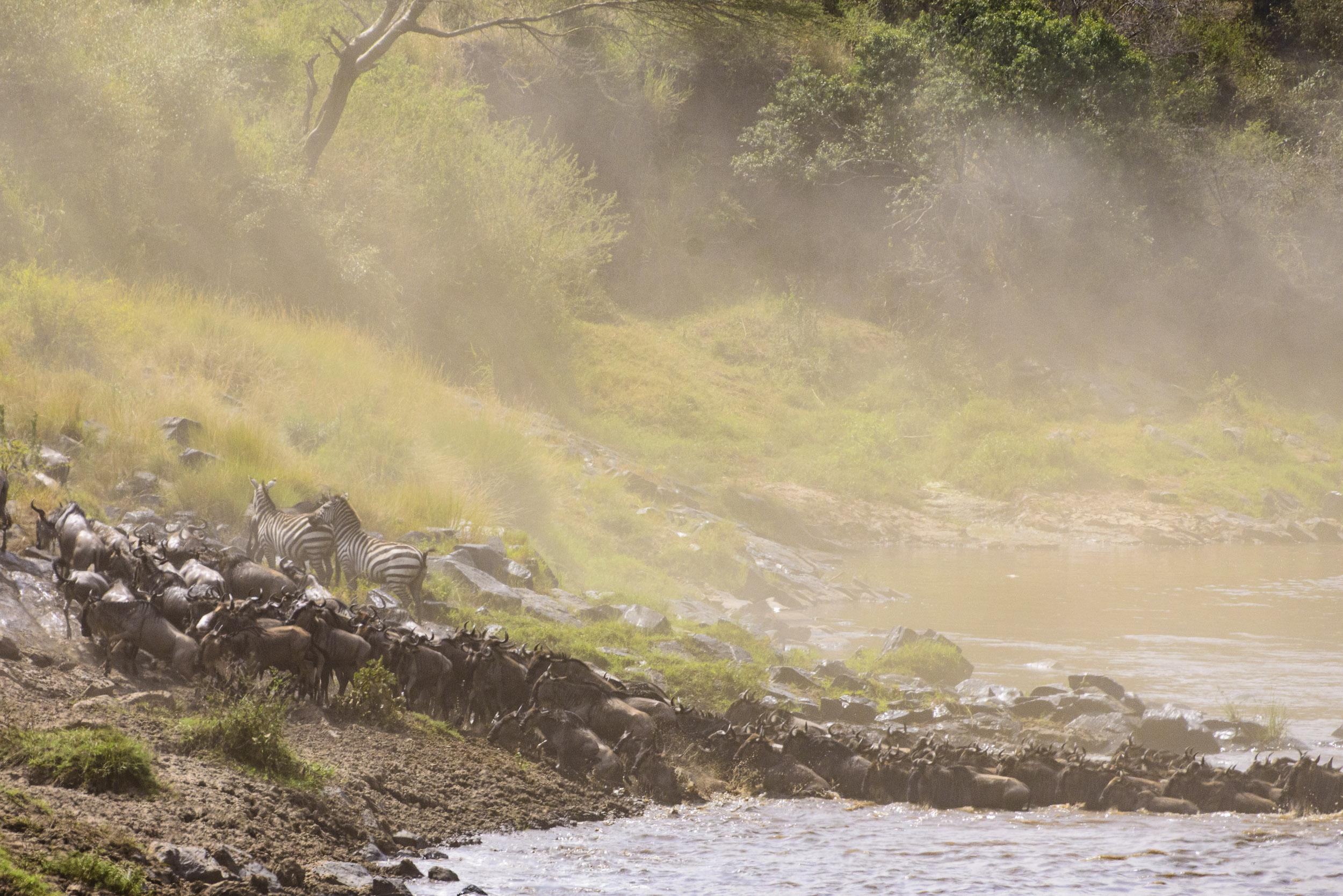 OscarDewhurst_Kenya_2014-335.jpg
