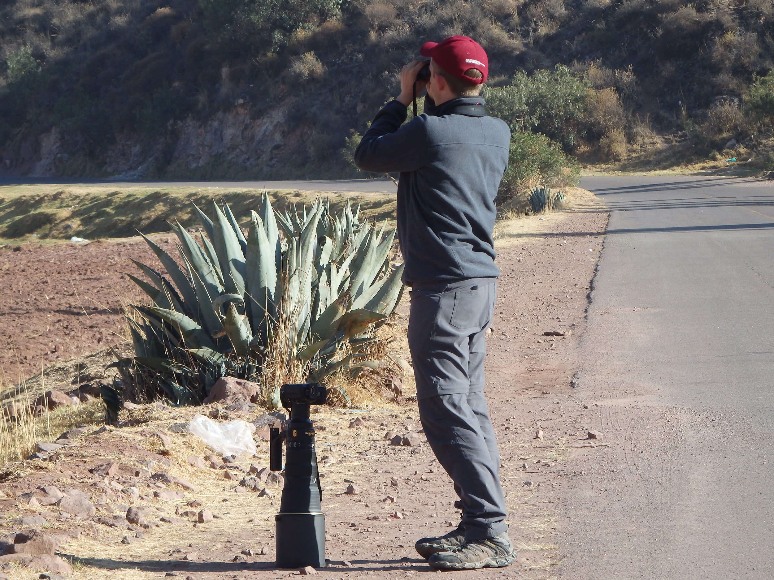 Searching for birds in the Peruvian Andes