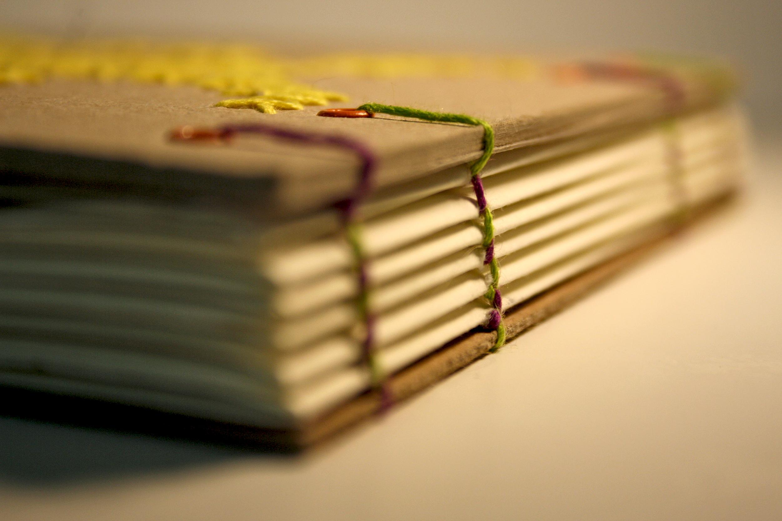 Bookbinding - Cross stitch - Imagine - spine.jpg