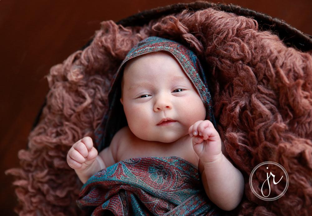 upper coomera newborn photographer