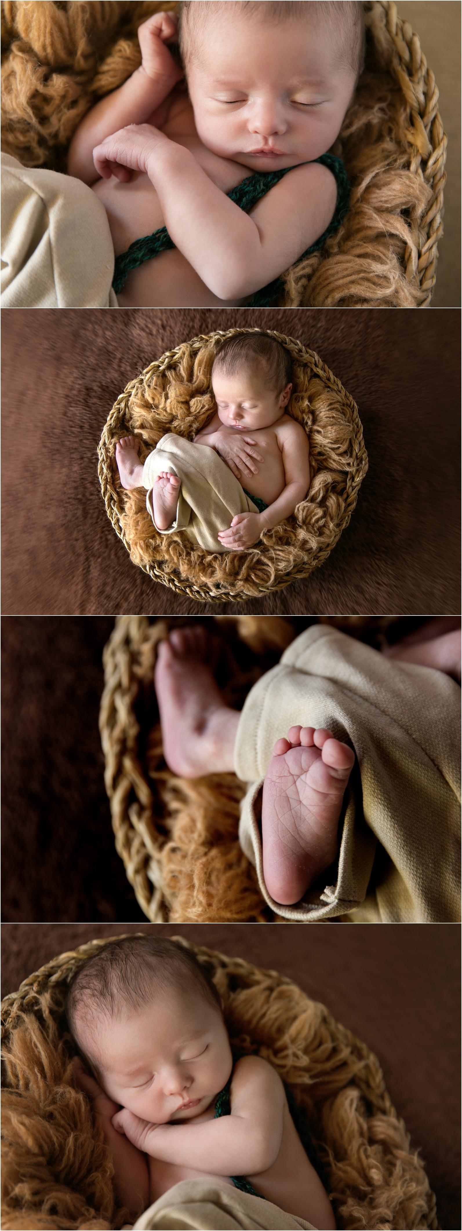gold coast newborn photography baby photos newborn photos gold coast