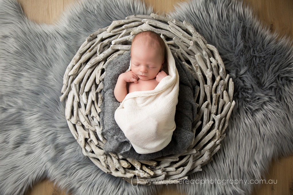 jade read photography gold coast baby photography upper coomera newborn photographer
