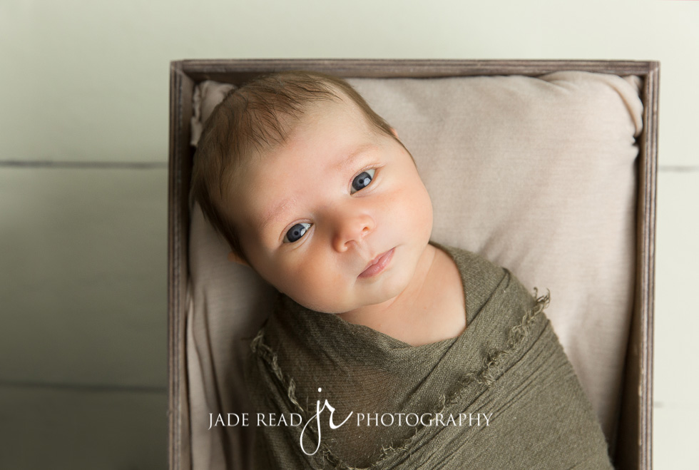 big brother baby pet family baby photographer gold coast 2 months old