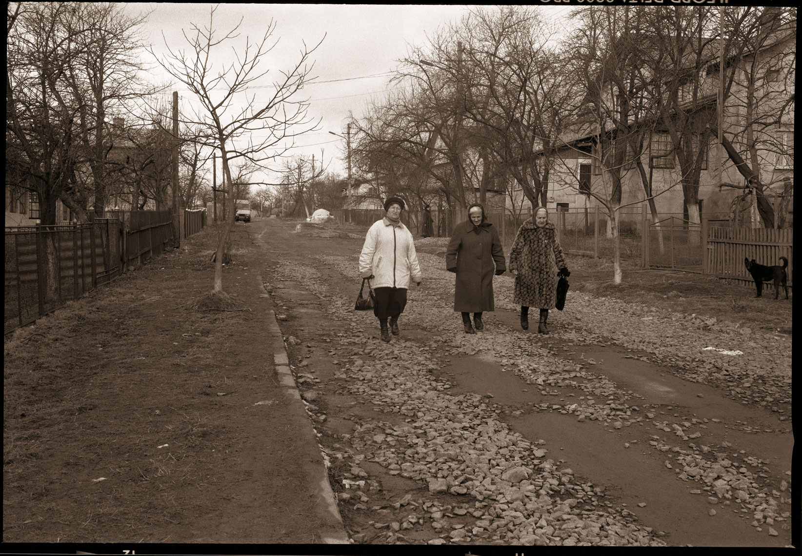 Women on Budivelna Street