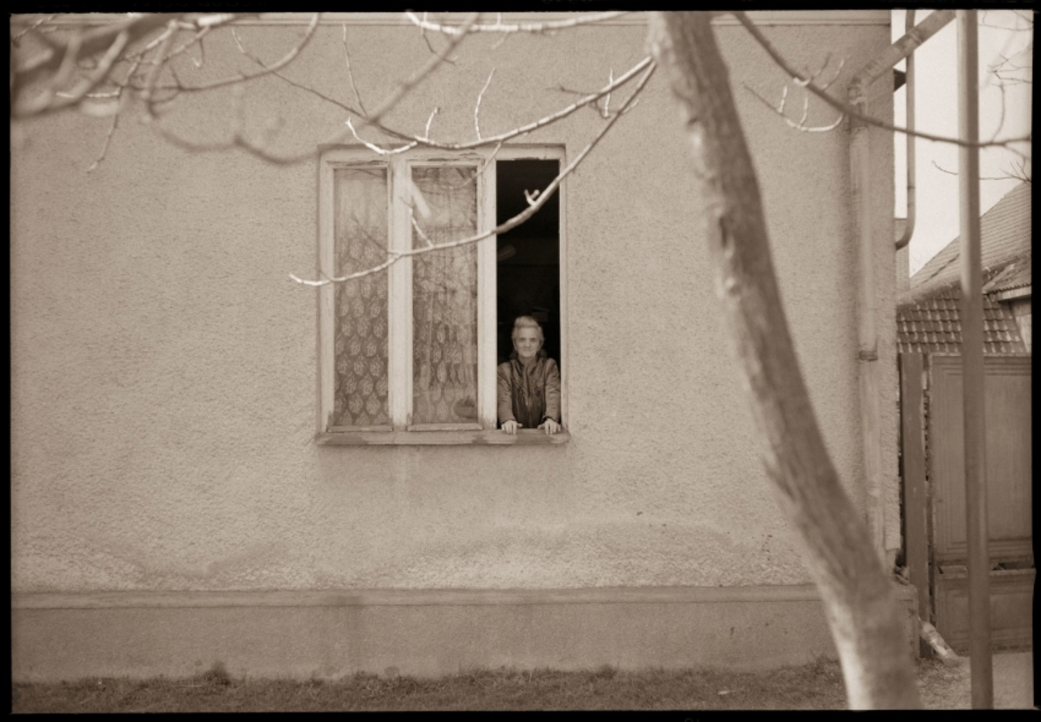 Helena at her Window