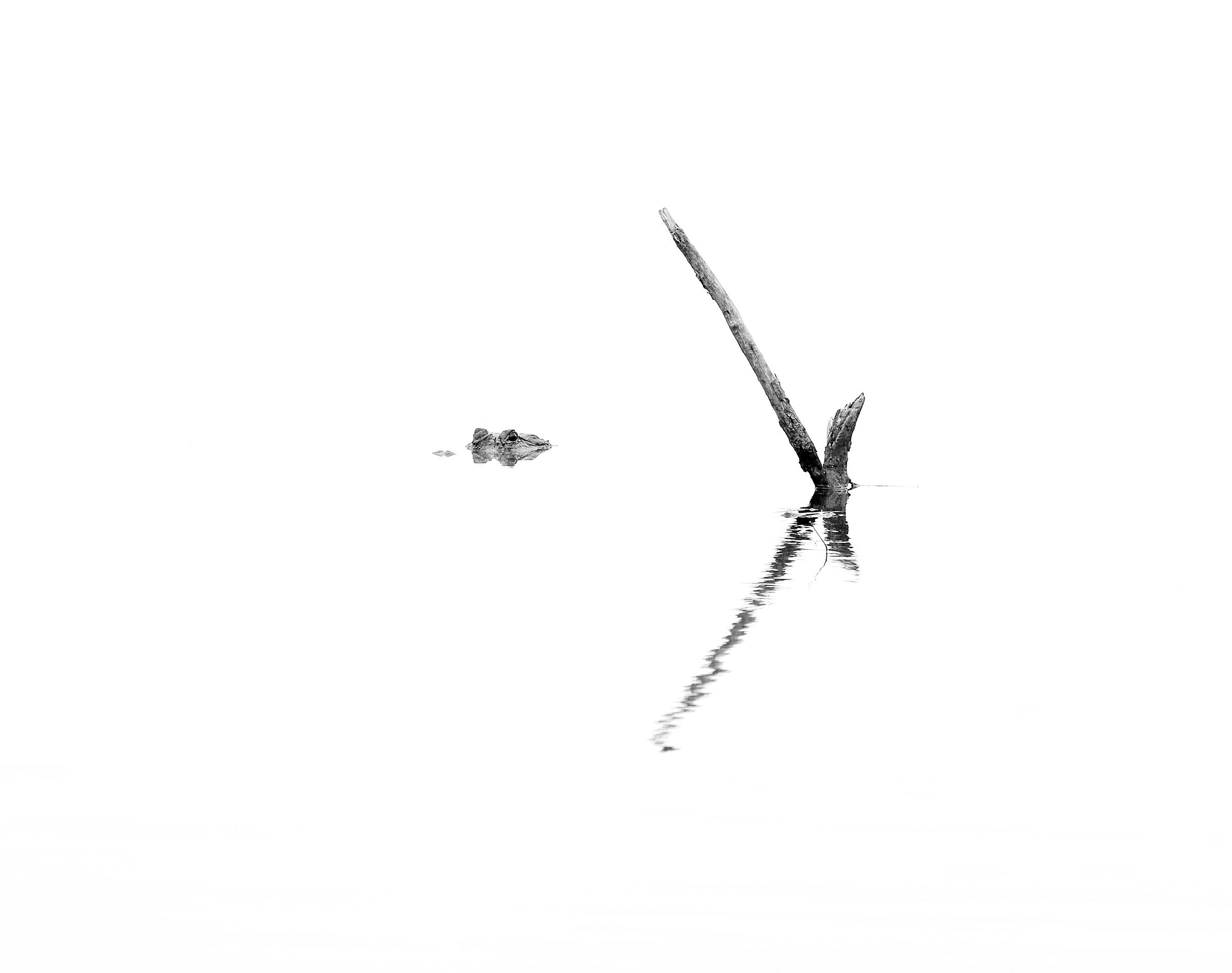 TS0A9948 wlayers framed.jpg