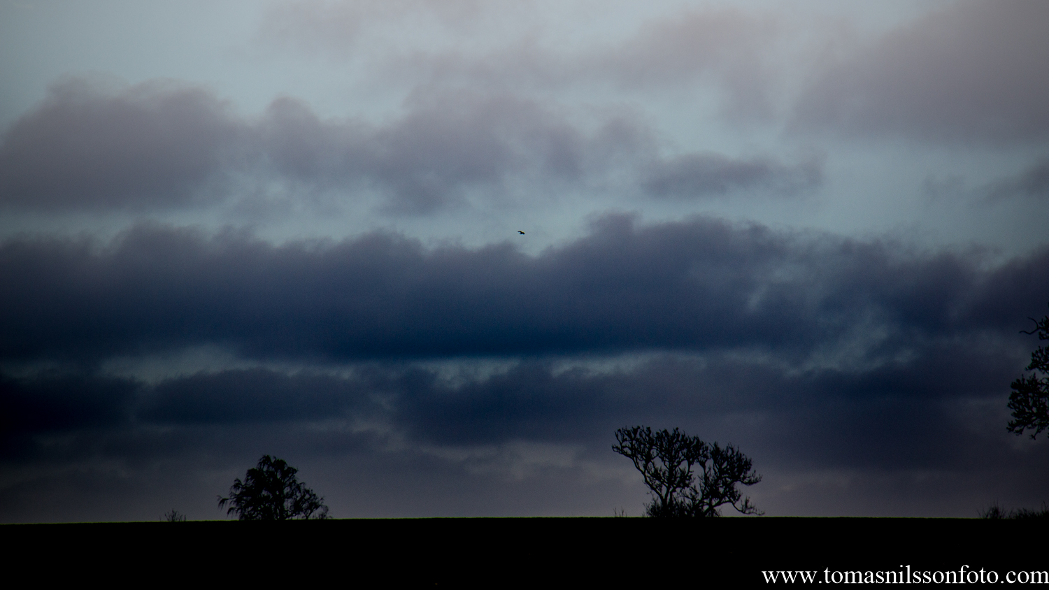 """I may have tweaked this image """"a bit"""" in Lightroom to make the sky somewhat more dramatic..."""