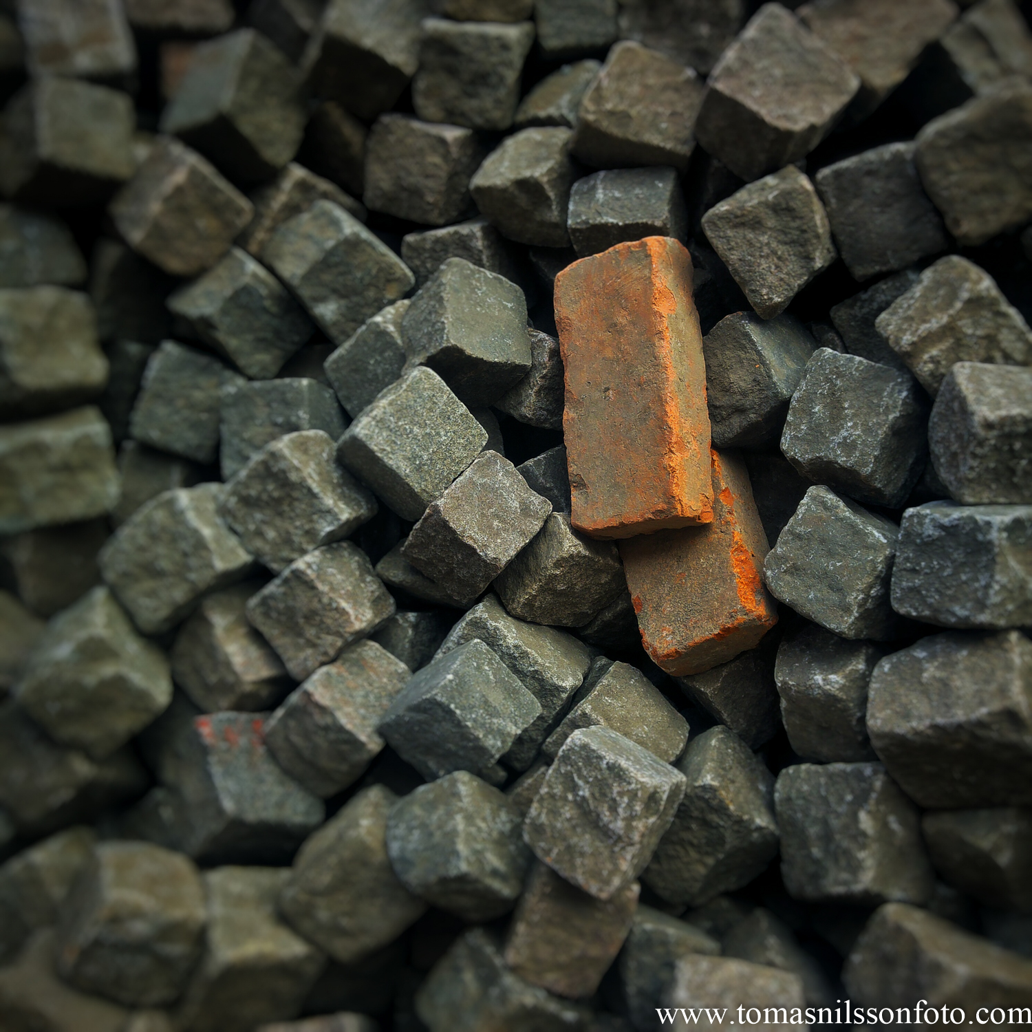 June 9 - Day 161: Just another brick in the pile...or two