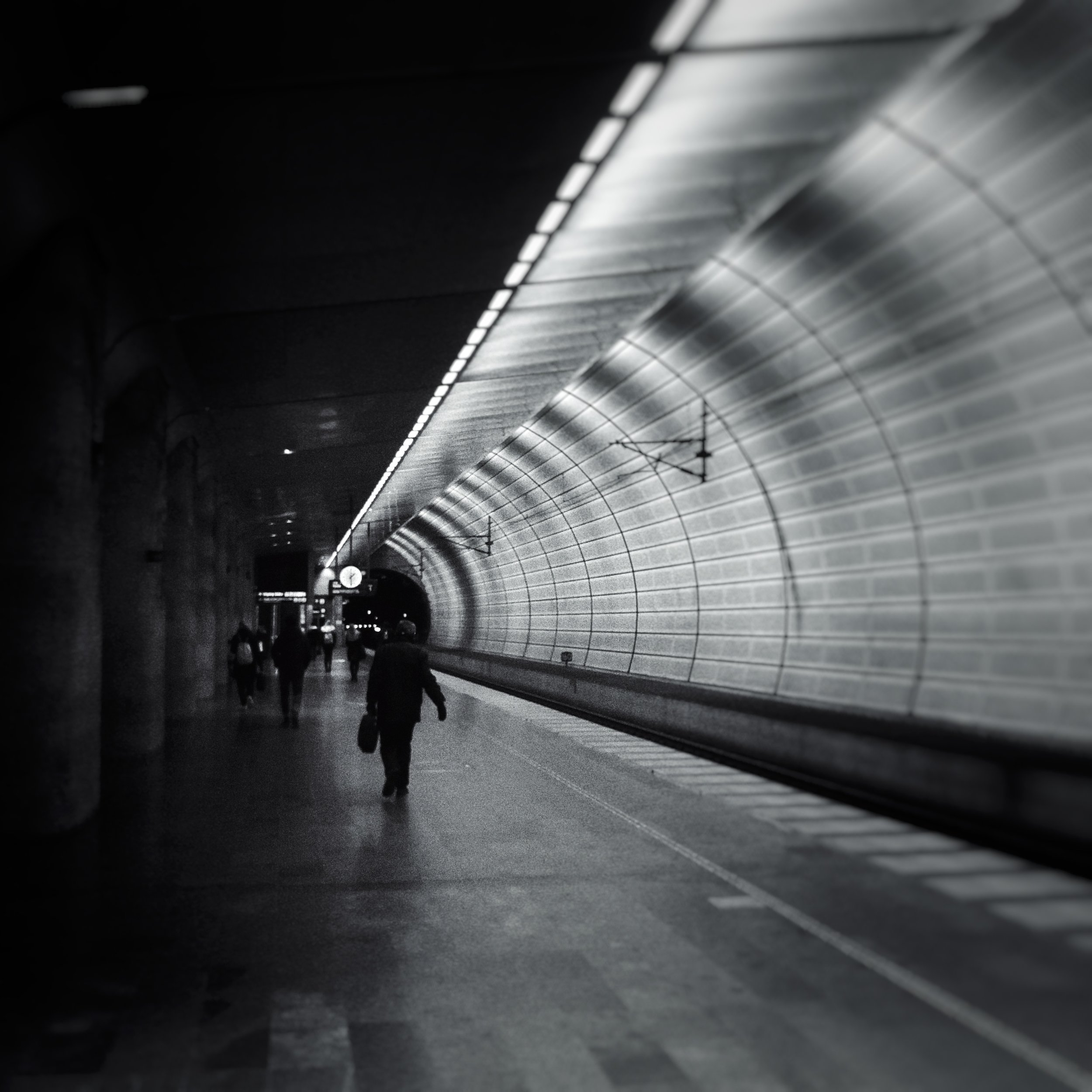 November 9 - Day 314: Into A Dark Tunnel