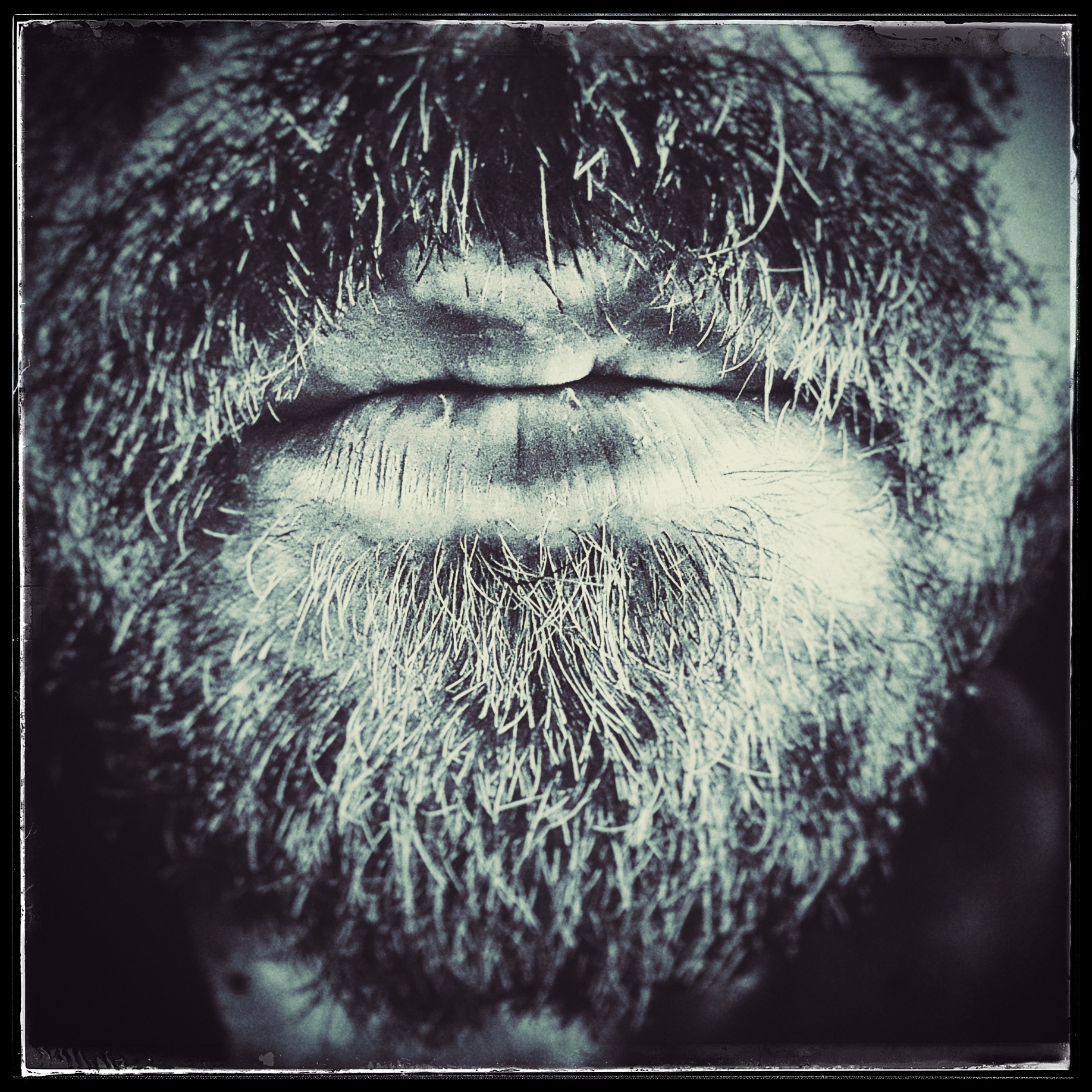 Day 44 - February 13: Beard