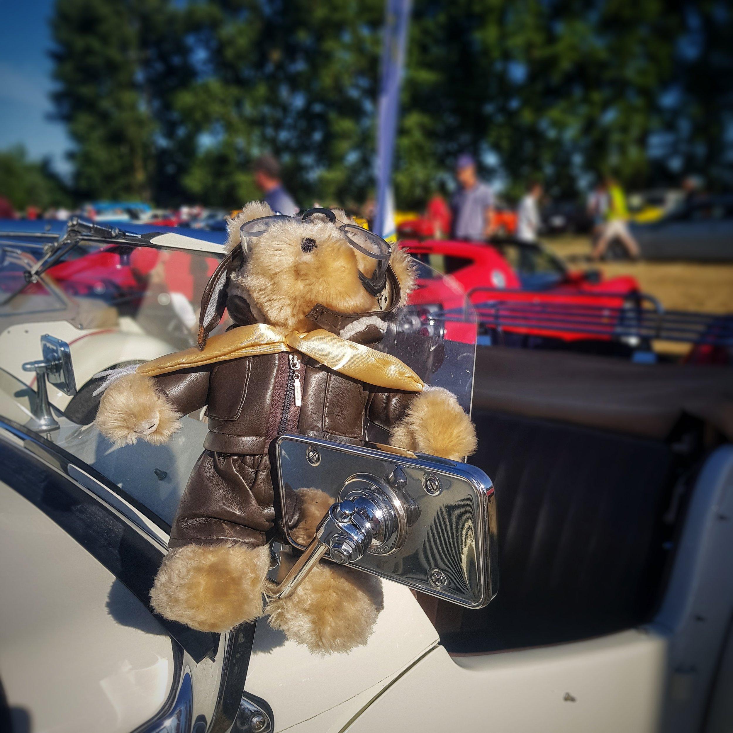 Day 156 - June 05: Teddy in a Triumph