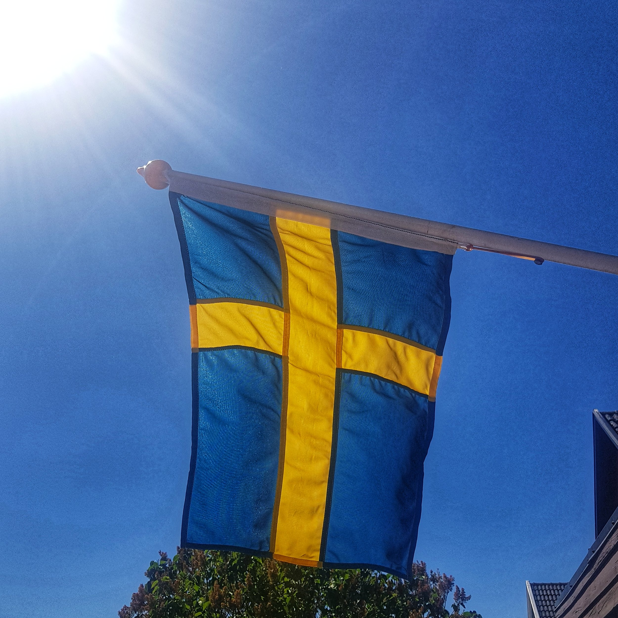 Day 157 - June 06: Sweden's Day