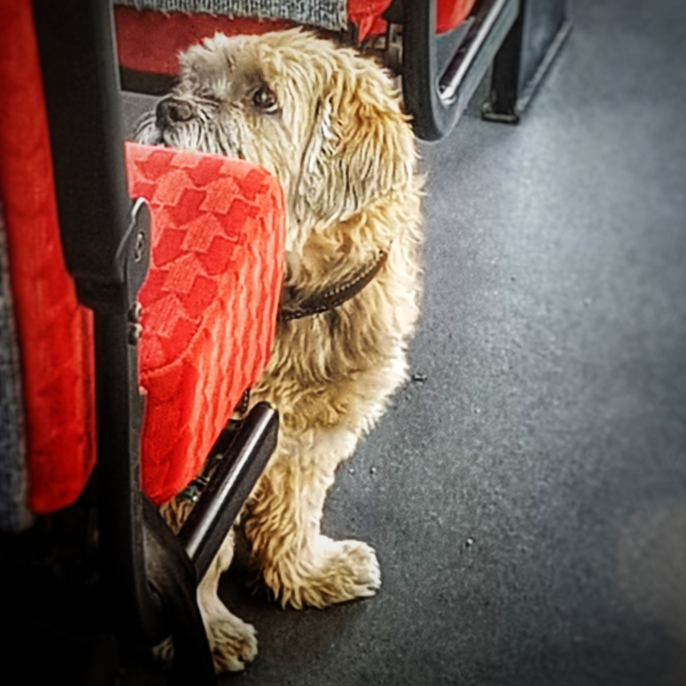 Day 177 - June 26: When is this bus ride over?