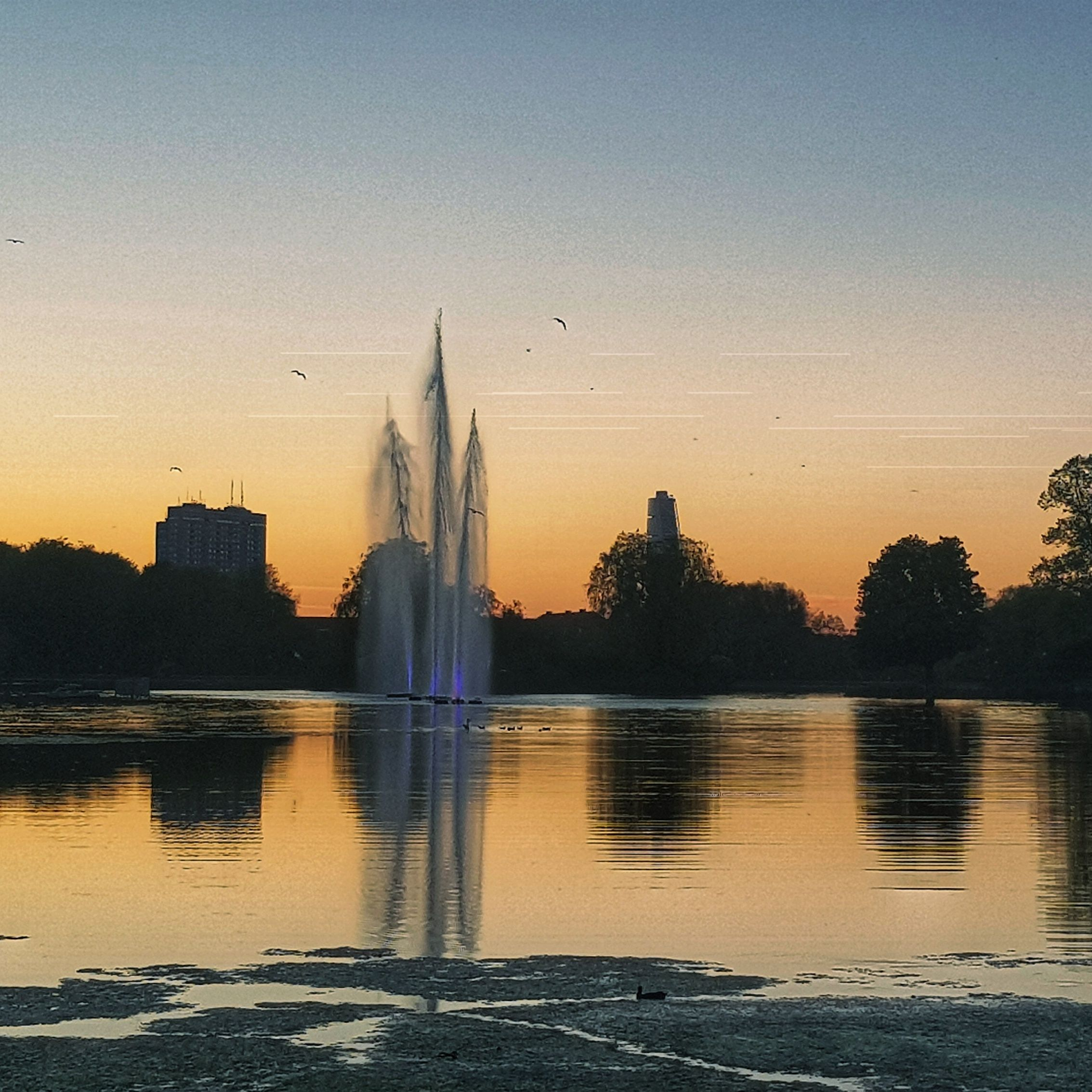 Day 134 - May 14: Sunset in the Park