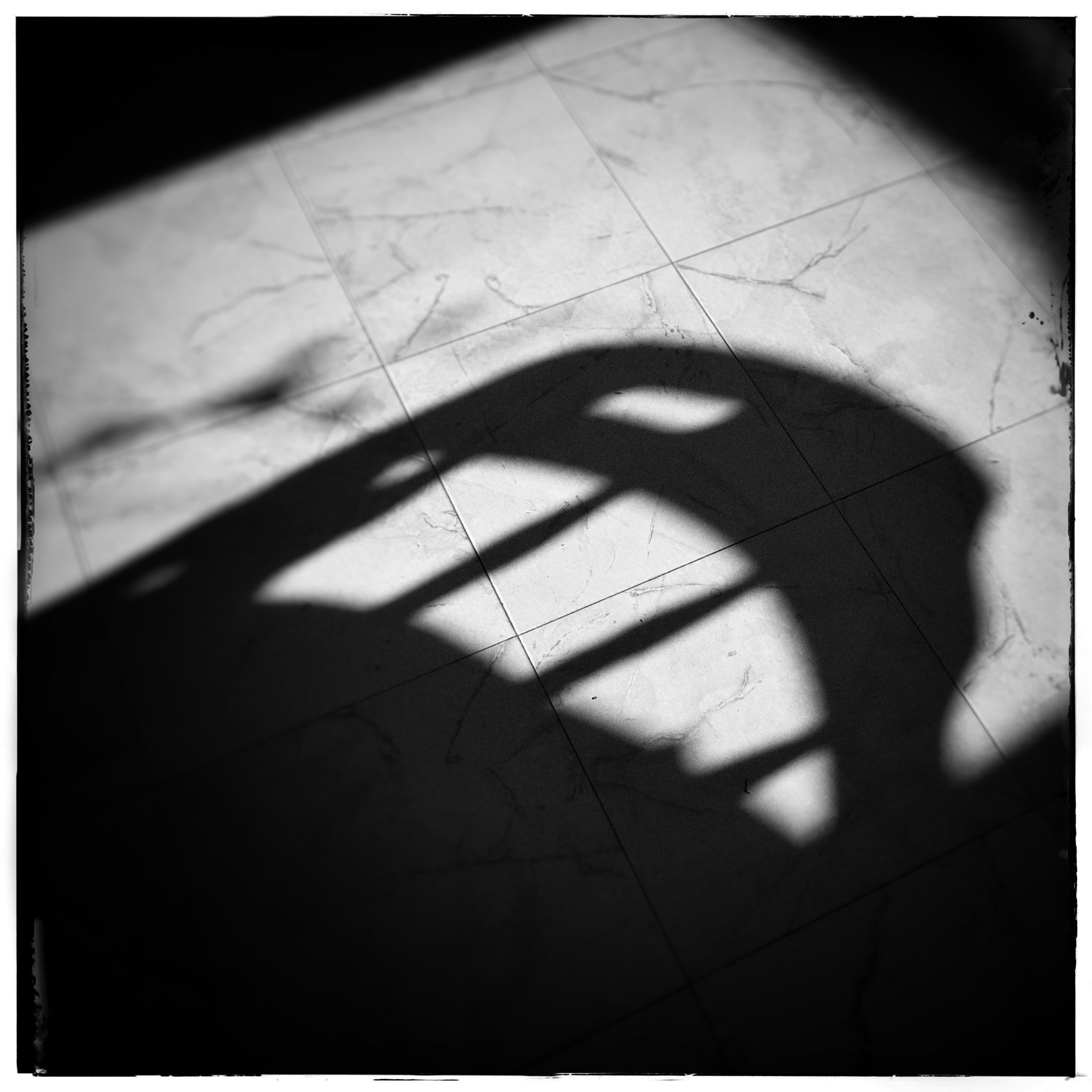 Day 194 - July 13: There's a shadow monster on the floor...
