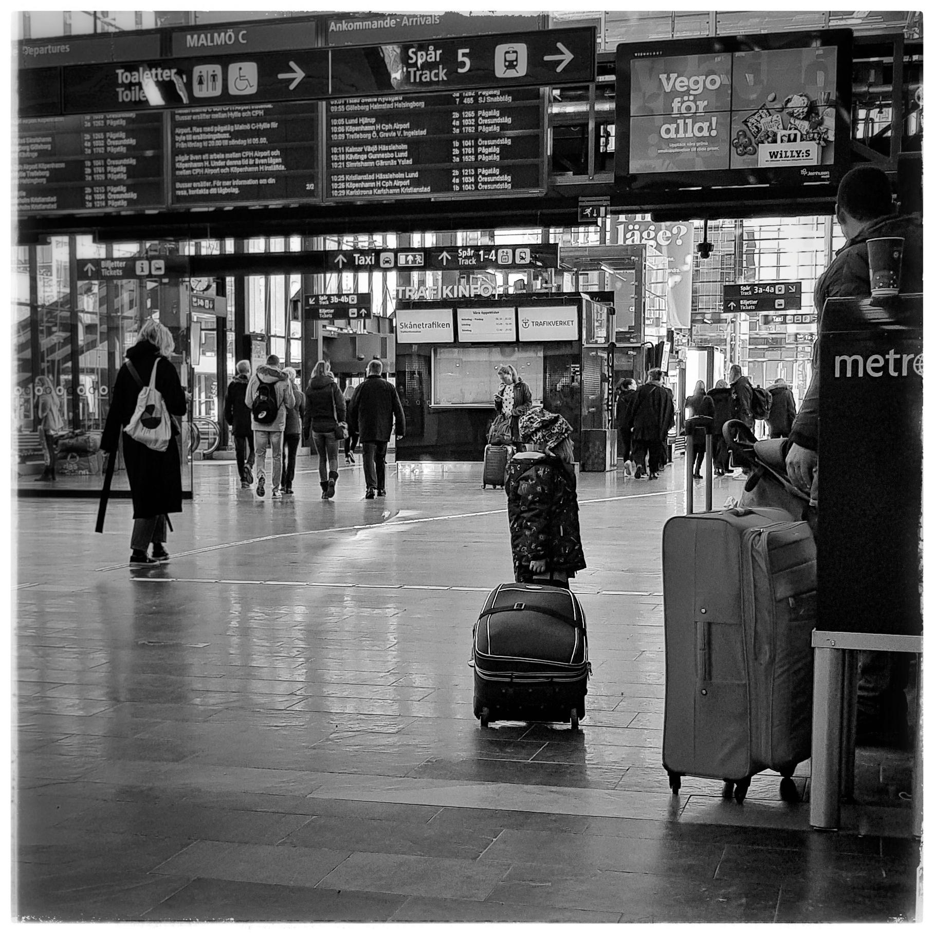 Day 307 - November 3: Little Traveler