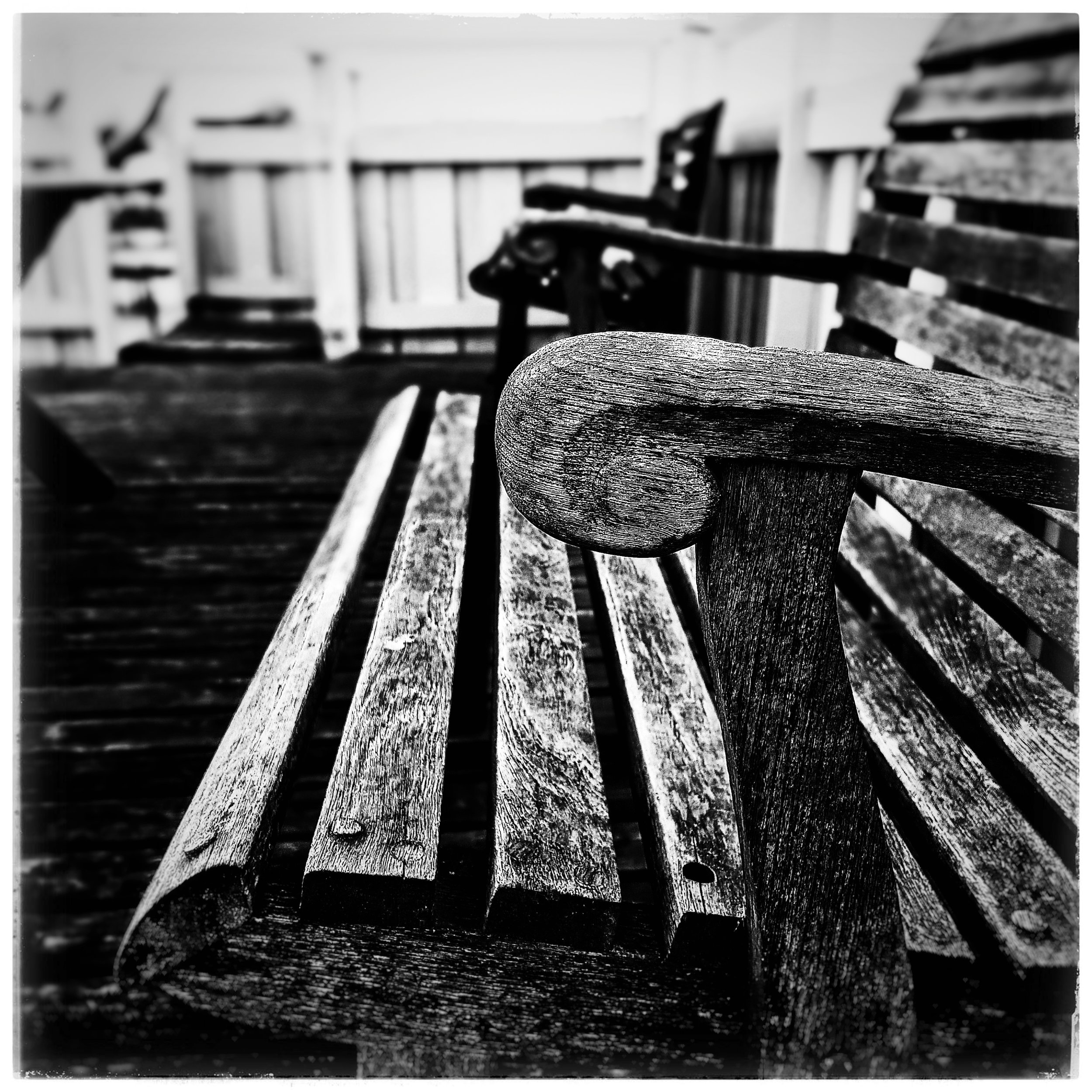 Day 311 - November 7: Sit for a spell
