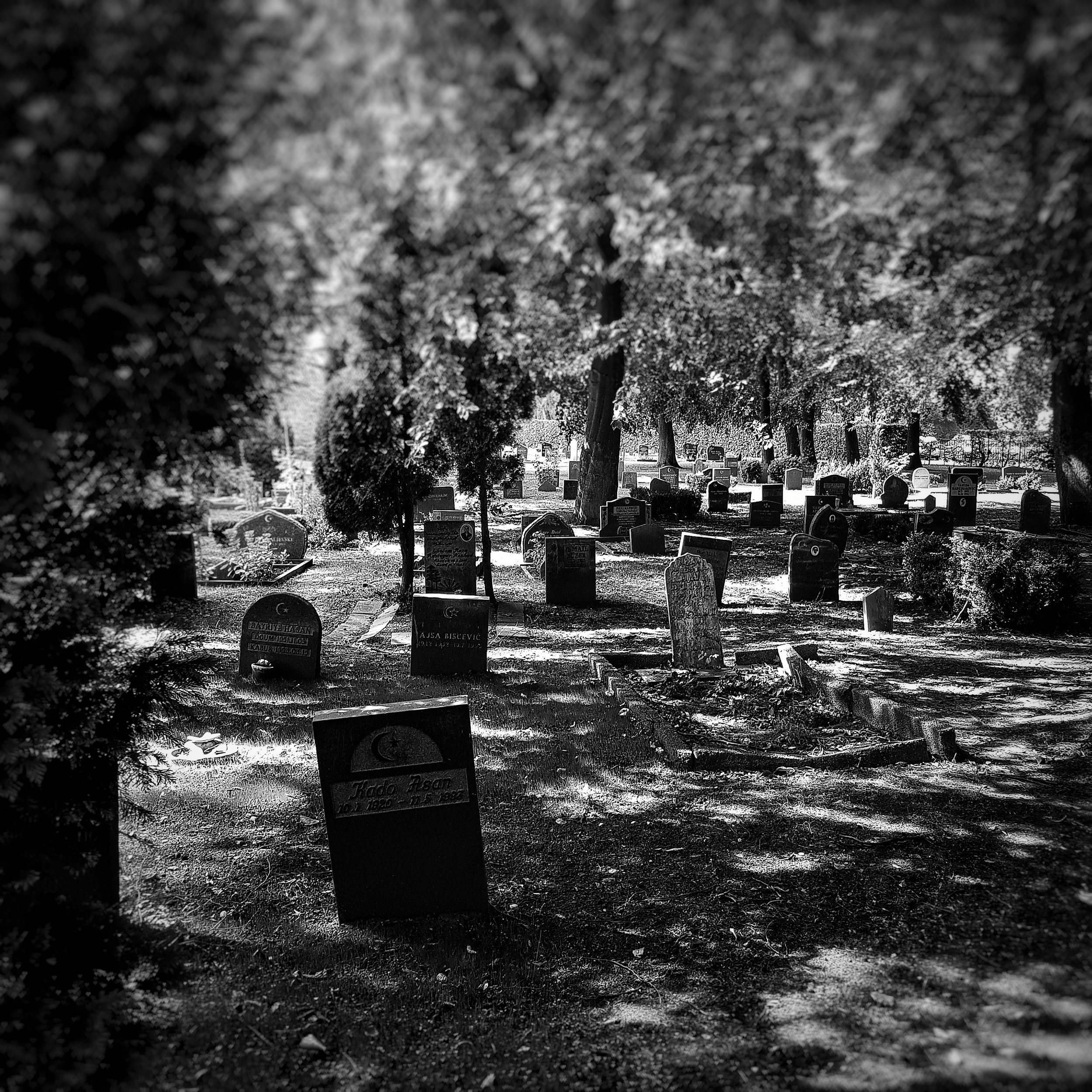 Day 234 - August 22: Remembrance
