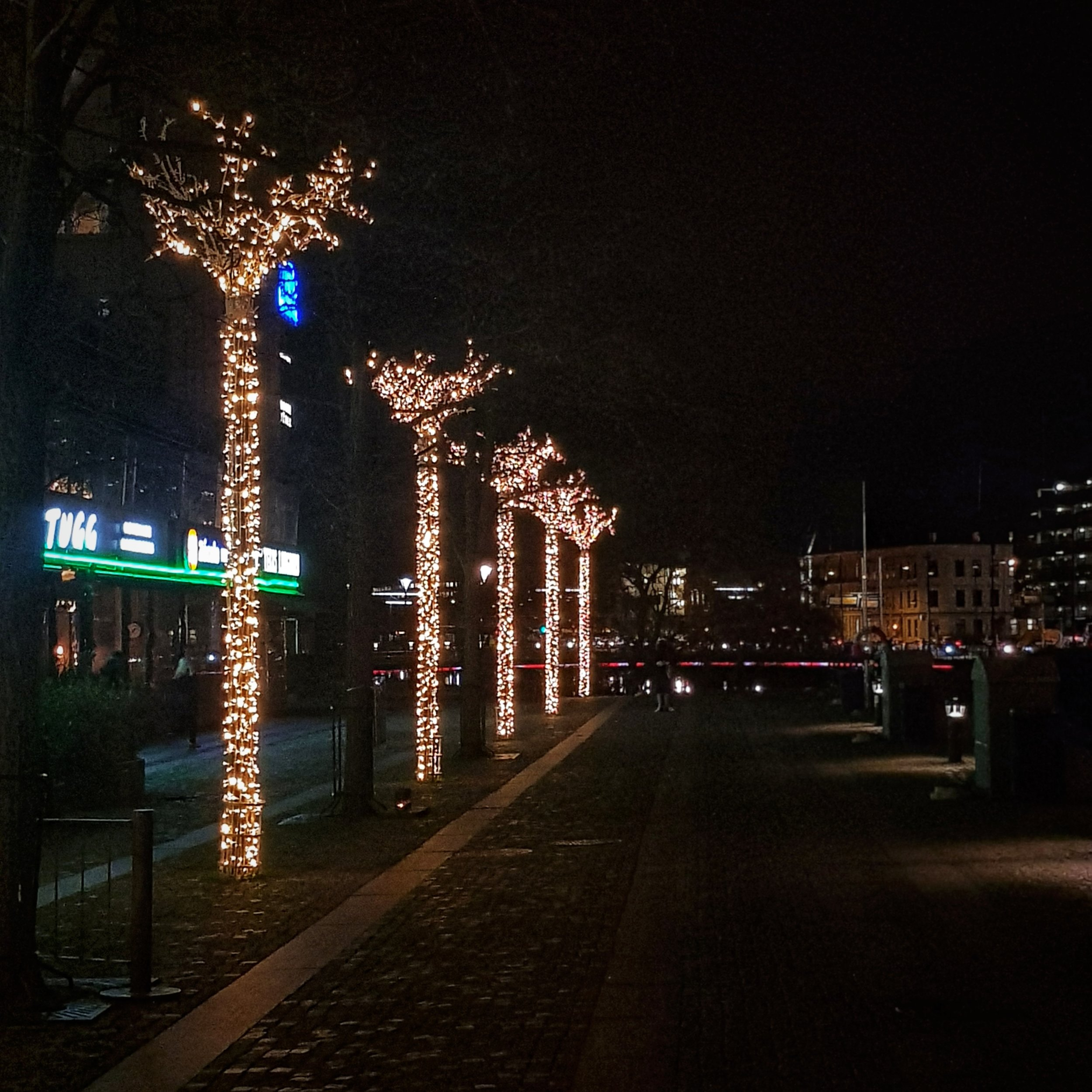 Day 348 - December 14: Row of Lights