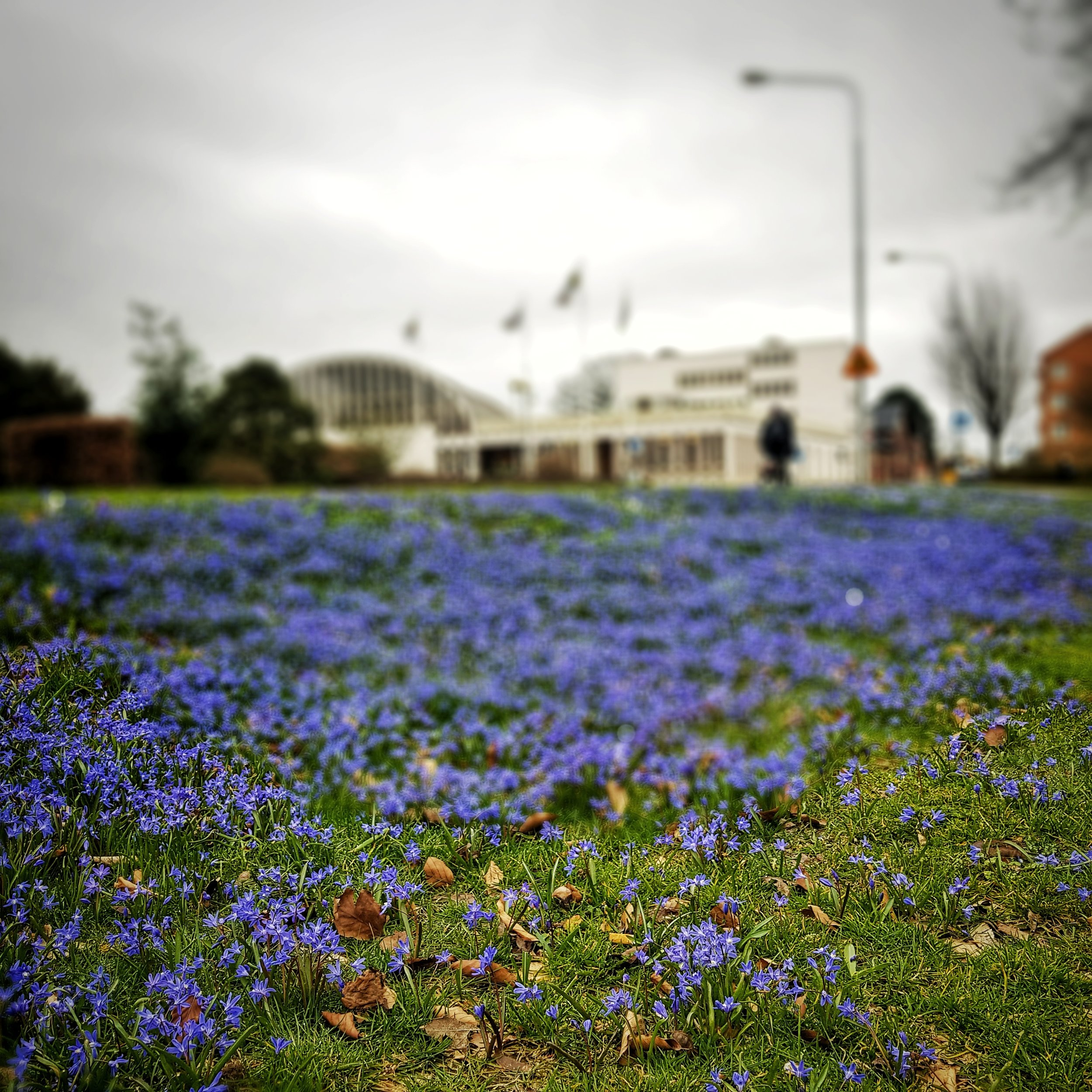 Day 103 - April 13: Blue Spring