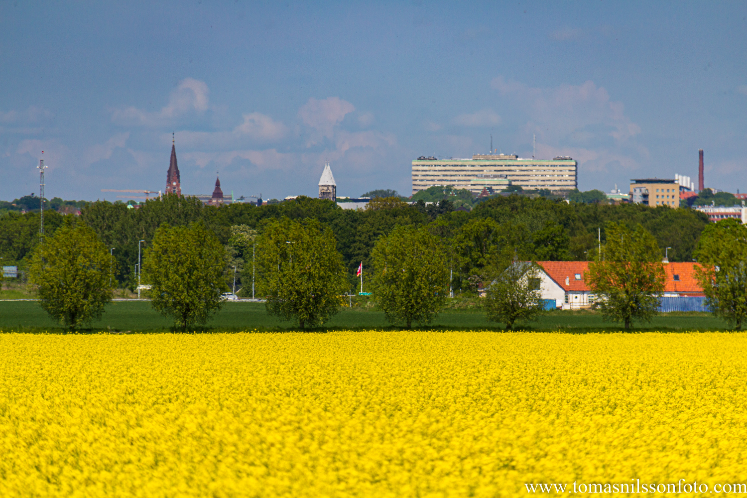 The city of Lund in the background