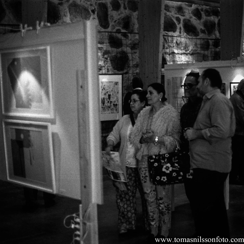 Day 142 - May 22: Art Watching