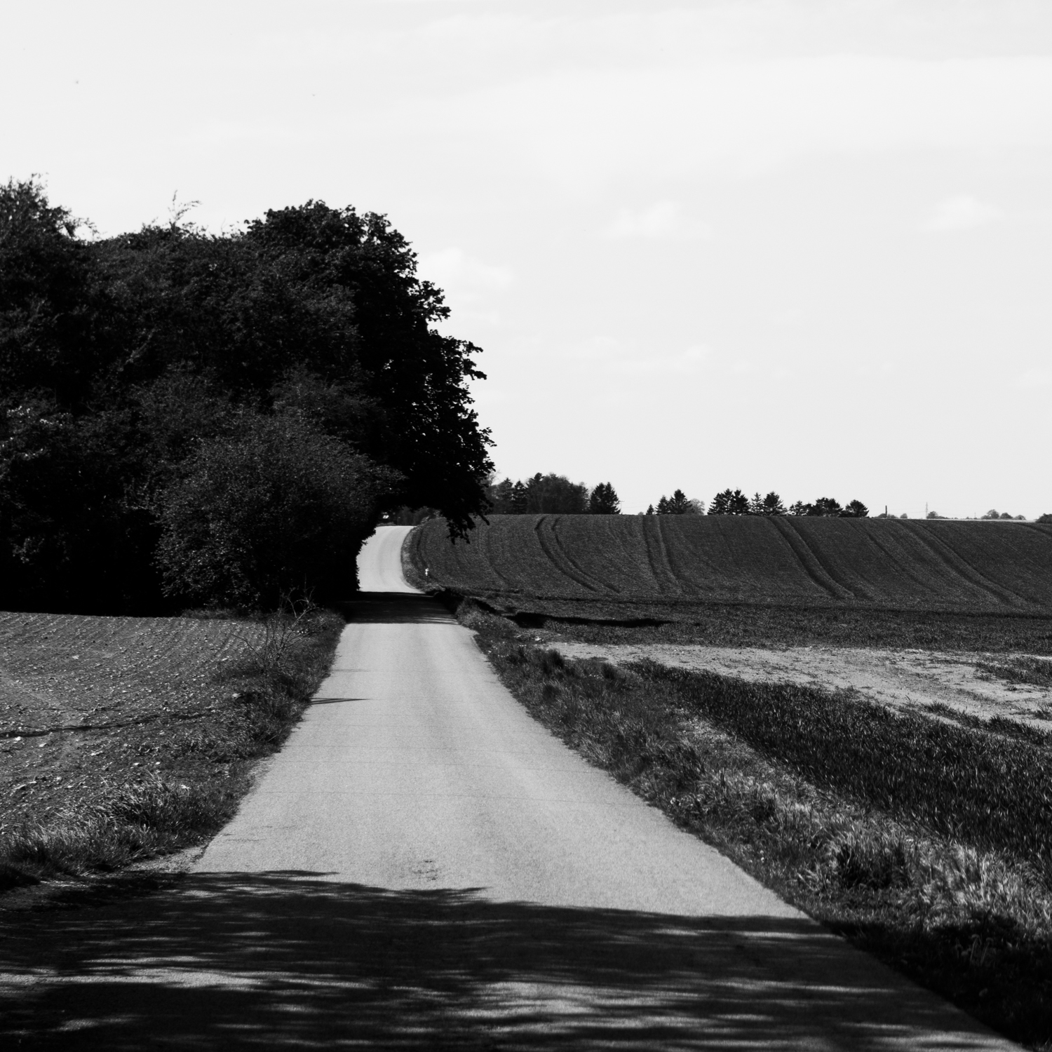 Day 150 - May 30: The Road Less Traveled