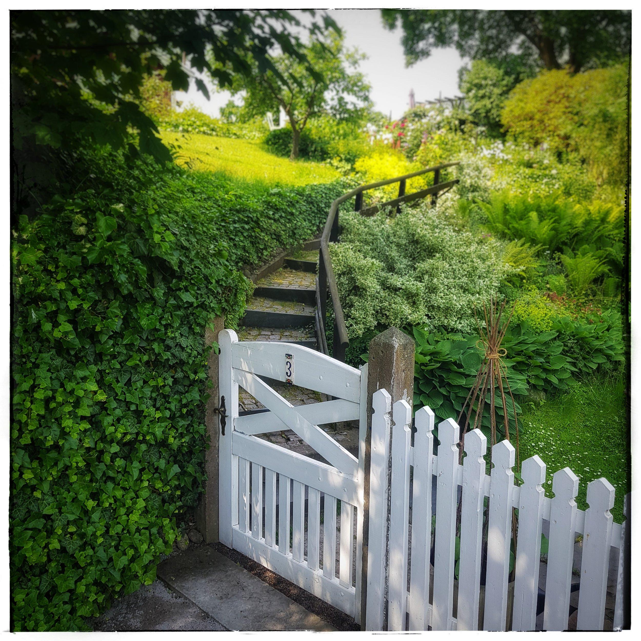 Day 170 - June 19: Garden Gate