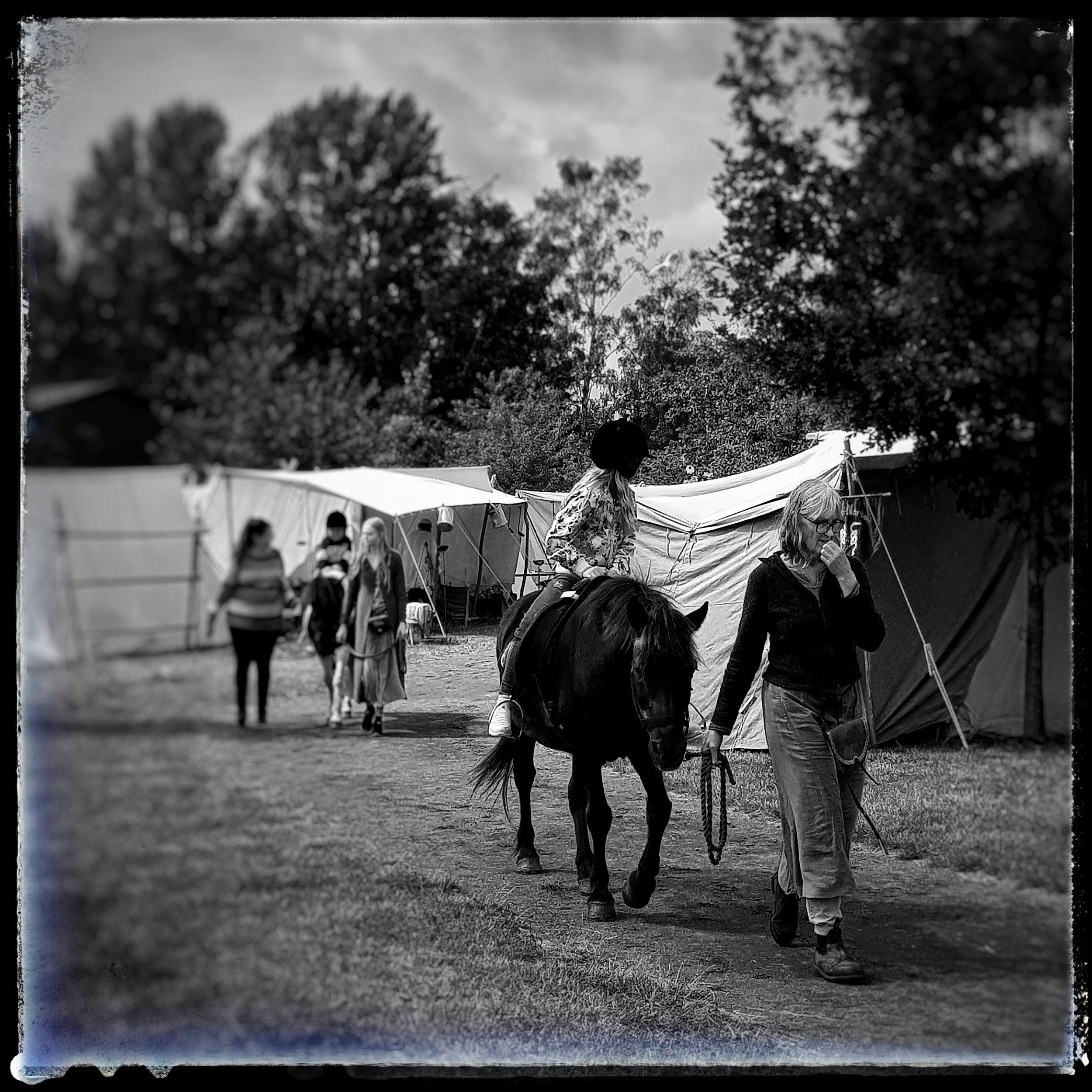 Day 188 - July 7: Horse ride at the Viking market