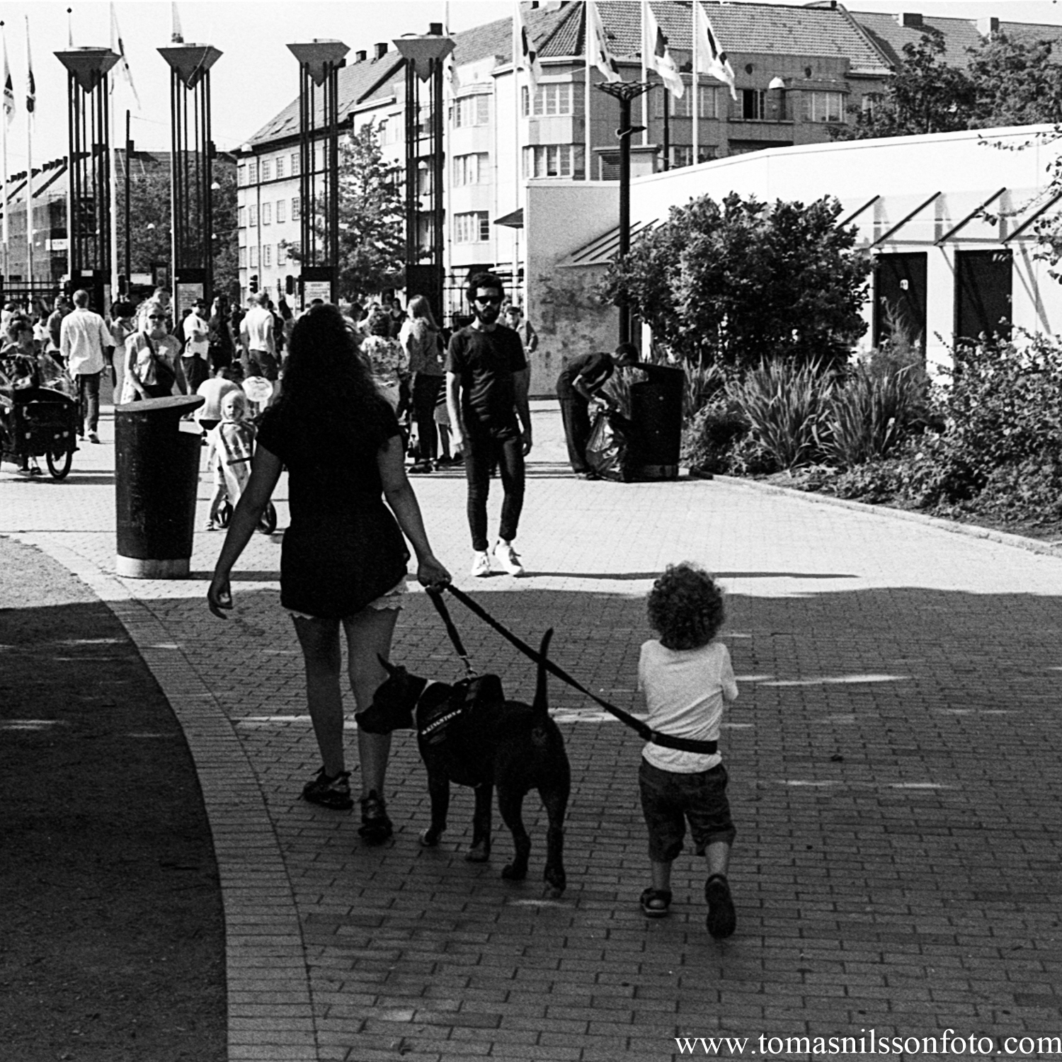 Day 204 - July 23: On a leash