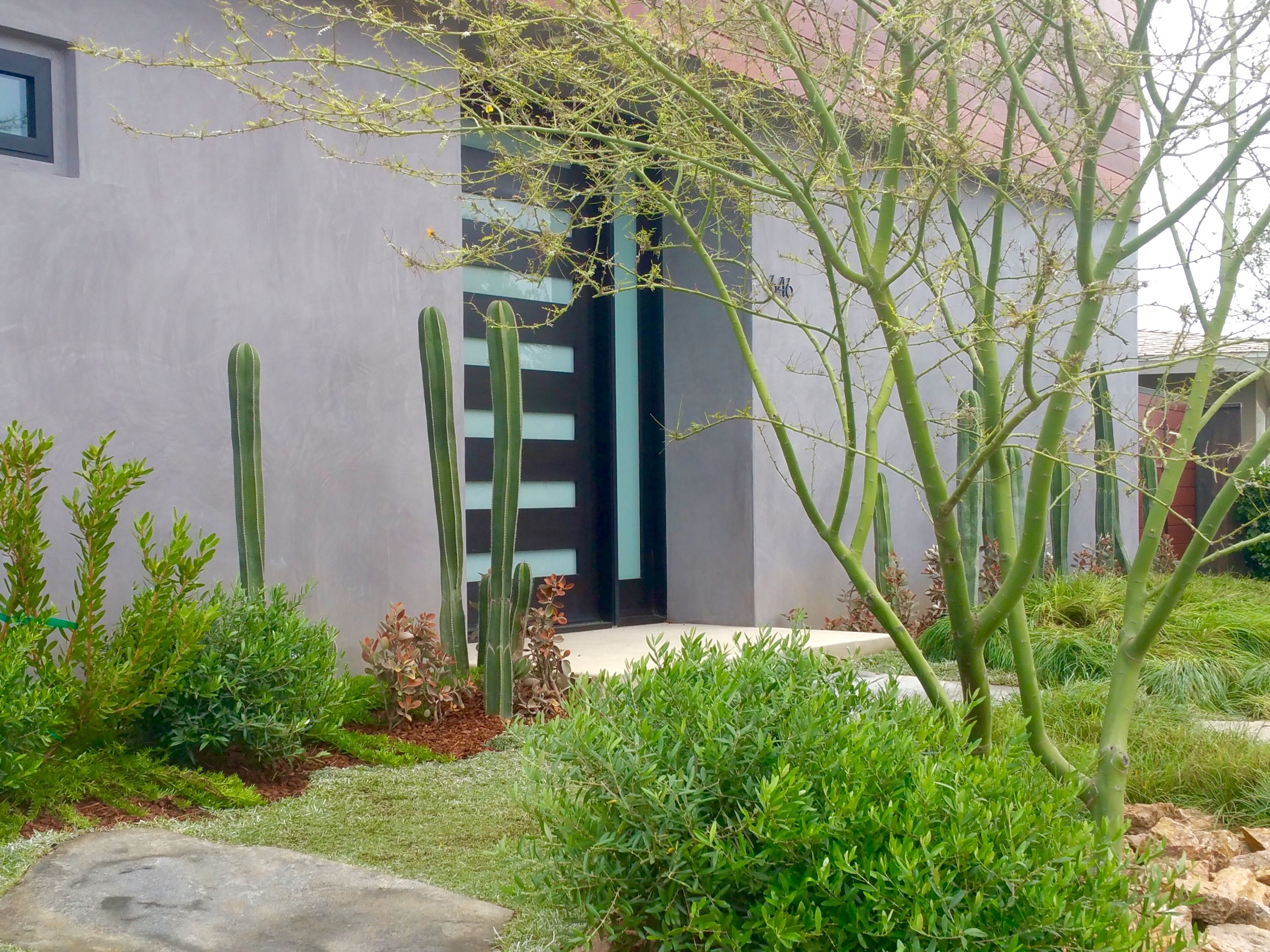 LAS LOMAS - This ultra modern family home needed warmth and depth brought to their landscape. Using low maintenance xeriscape plants and trees, extra large flagstone and low accent walls we layered textures and colors to provide visual interest depth to this narrow yard.