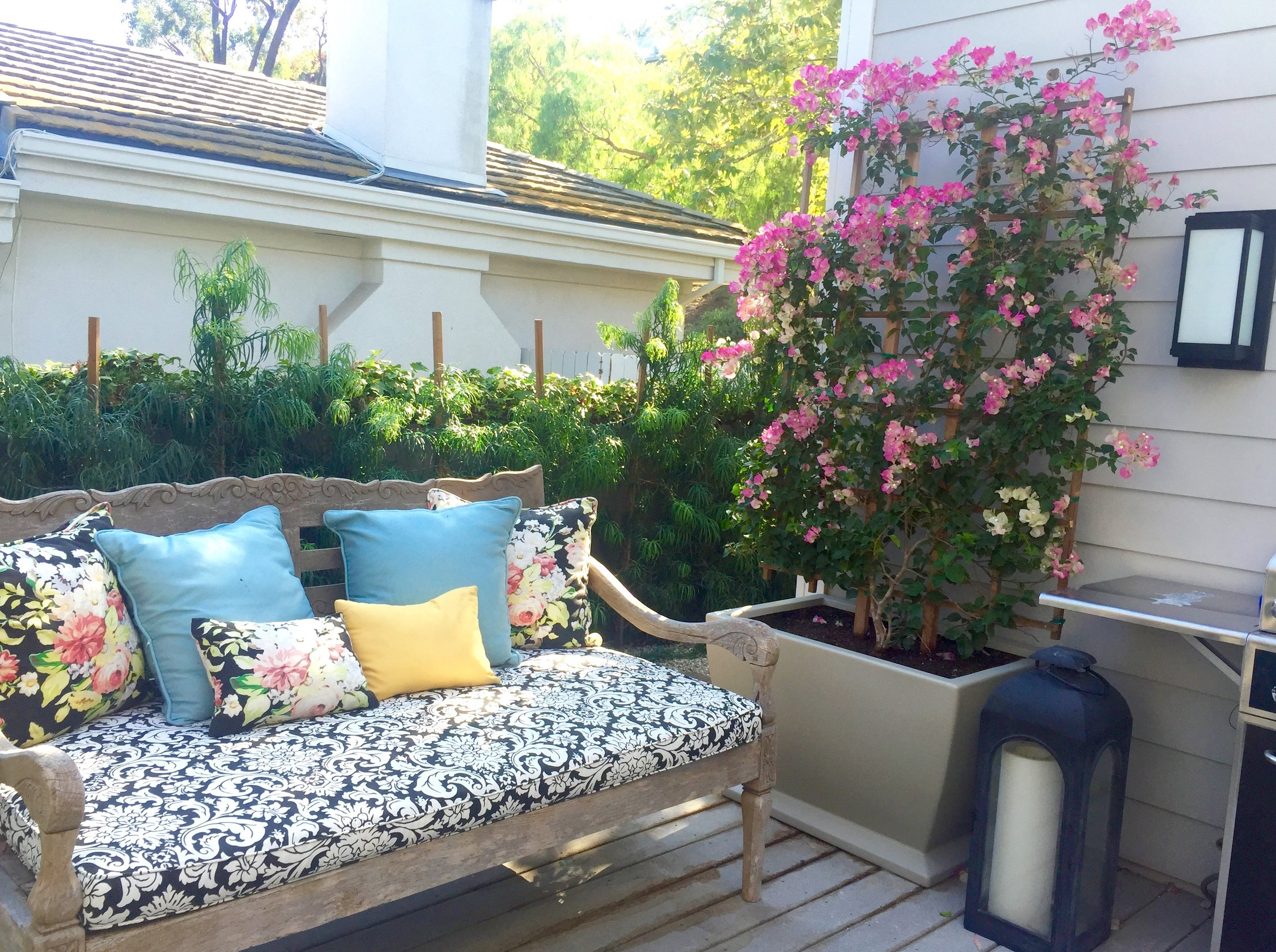 MARONEY - Originally a spec house bought for a growing family these clients wanted a colorful and child friendly landscape. By adding pottery, retaining walls, succulents and pops of color we made this bland space feel custom.