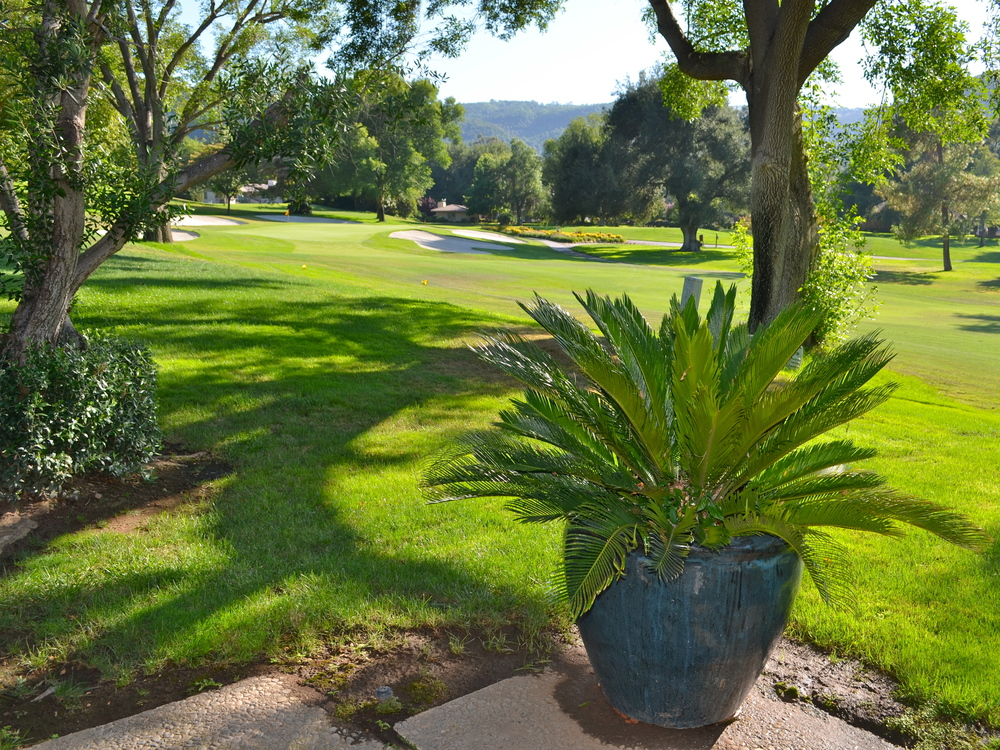 LA PALMA - Situated on a classic Southern California golf course this multi generational vacation home needed new life breathed into it. By sticking to easy maintenance, climate appropriate plants we were able to give a mini face lift to a home that had not be reimagined in decades.