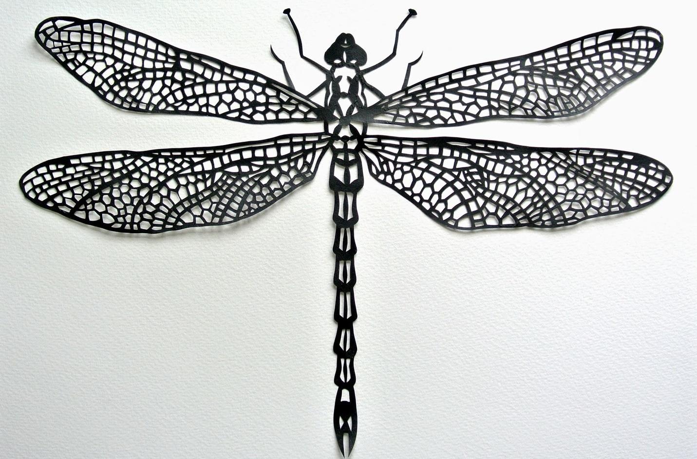 Dragonfly_byGillGutherie
