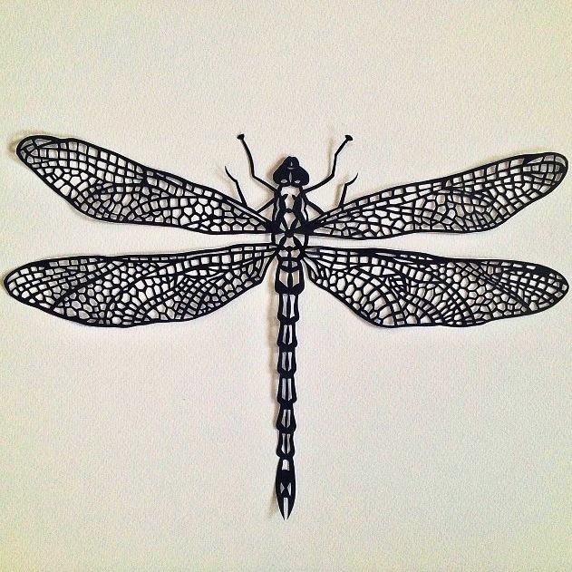 Dragonfly - Black £295 | Canford paper, spray paint, pins, foam board |50cm x 50cm