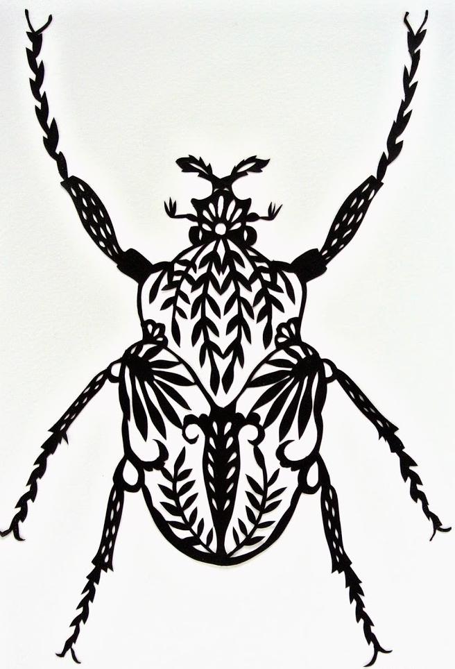 Black_beetle_byGillGutherie