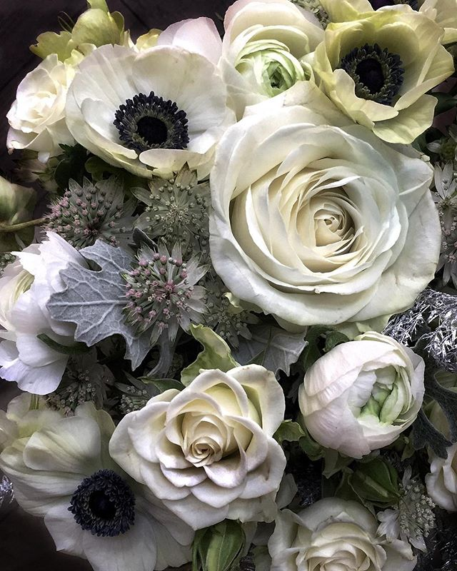 Winter whites....these flowers seem rather fitting as the weather has taken a wet, windy and wintery turn this weekend. Hope you've all had a good one whatever the weather! (that's enough alliteration for now)