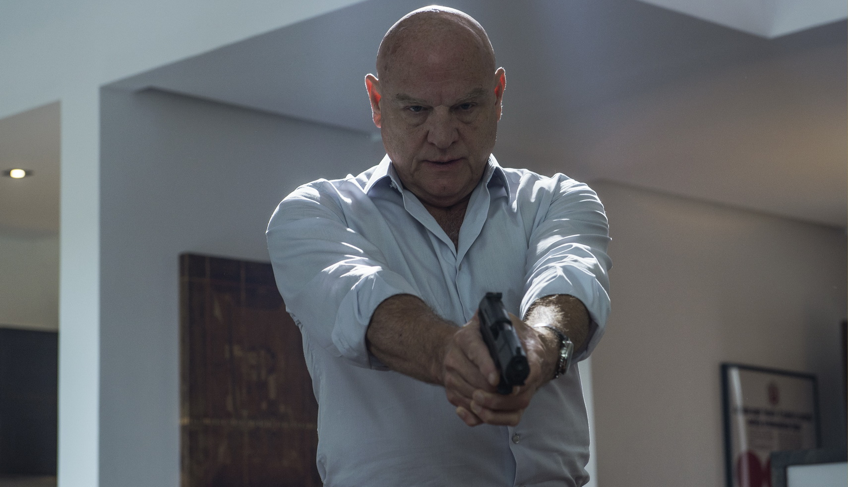 Hanley with a gun.jpg