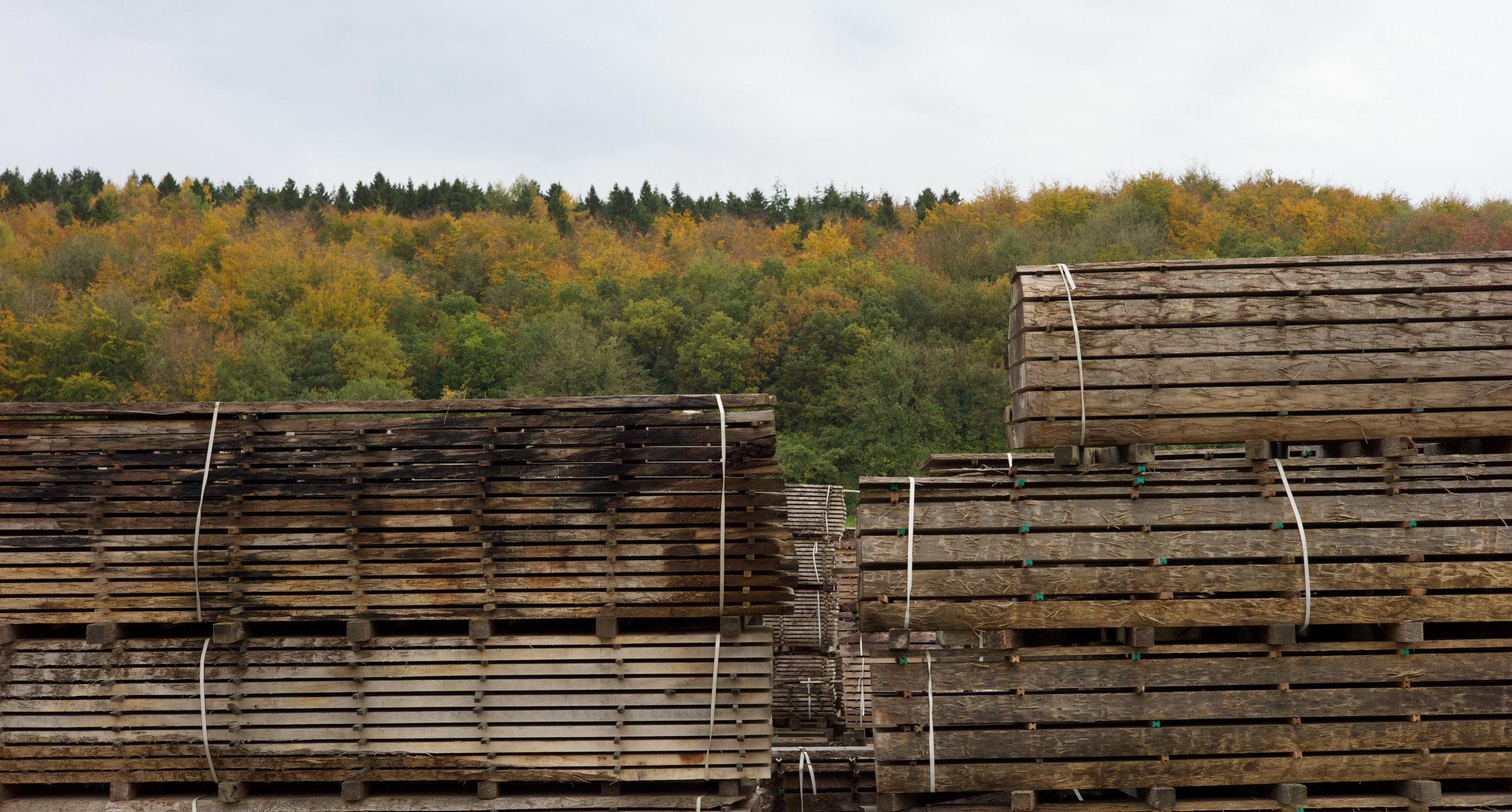 British wood